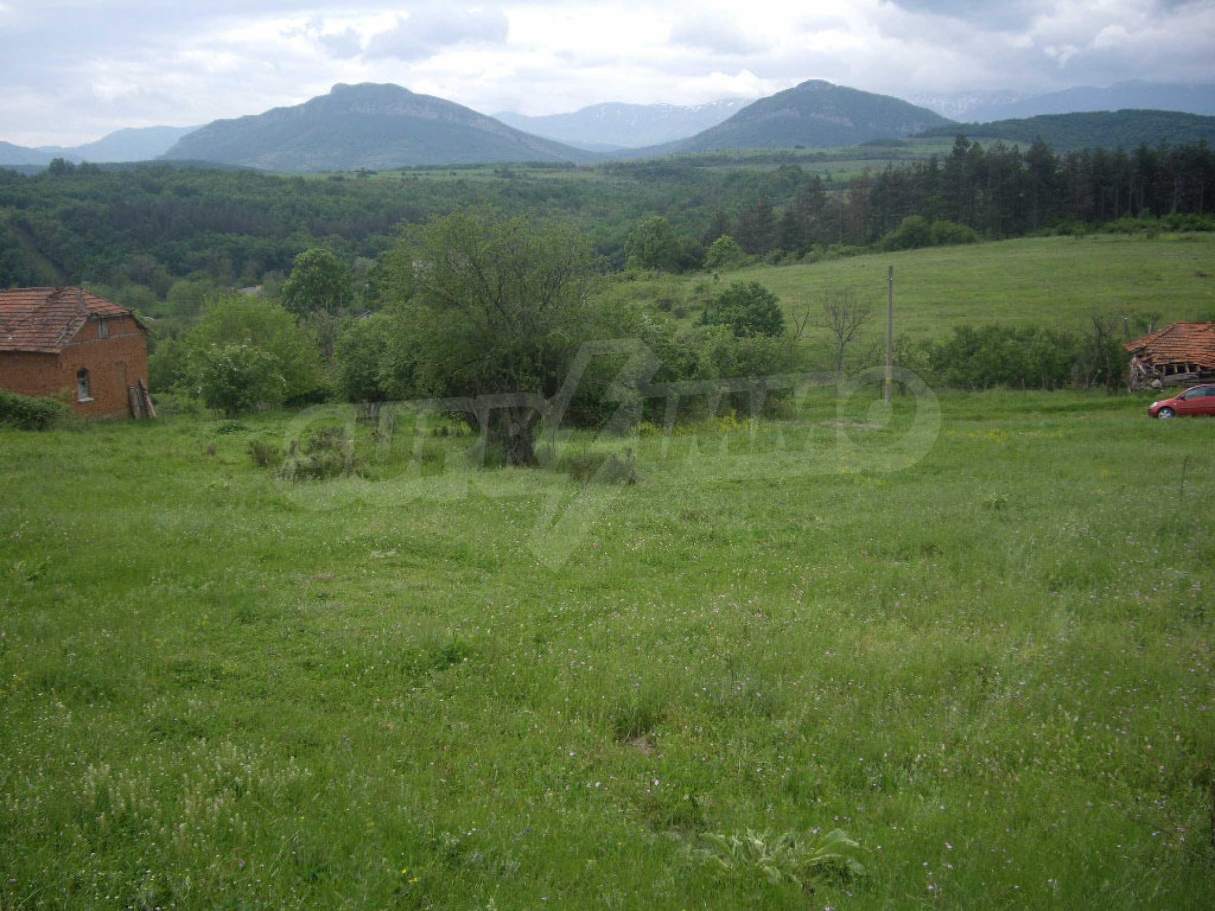 Großes unreguliertes Grundstück 50 km von Vidin entfernt 5