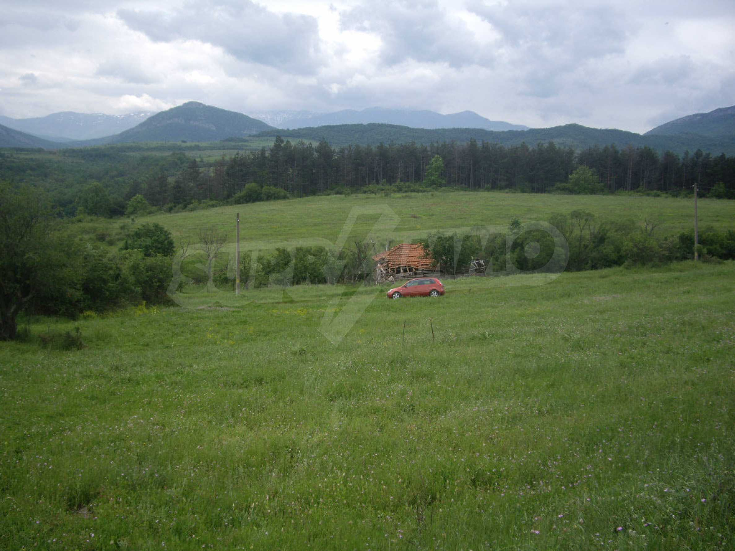 Großes unreguliertes Grundstück 50 km von Vidin entfernt 6