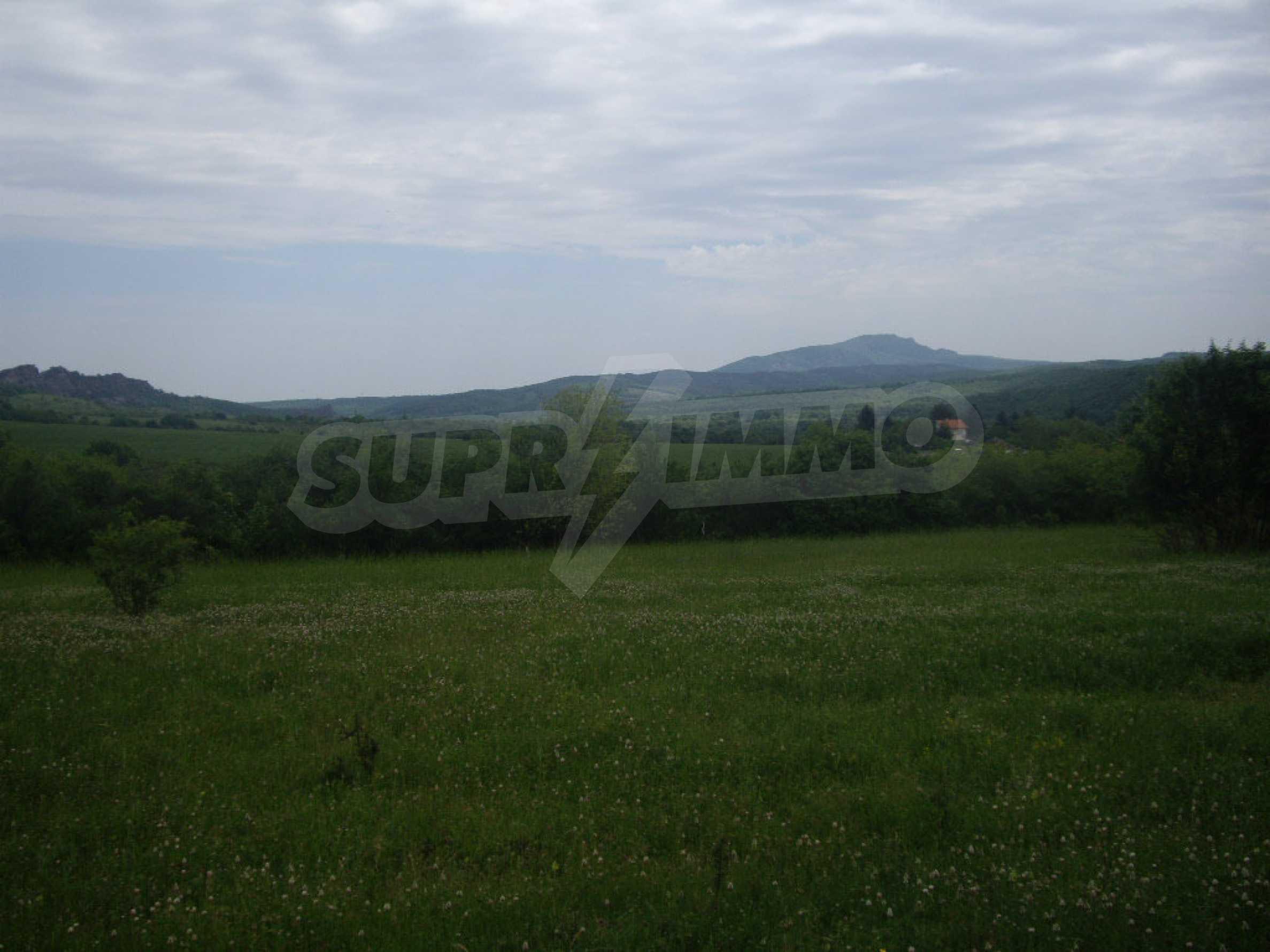 Großes unreguliertes Grundstück 50 km von Vidin entfernt 7