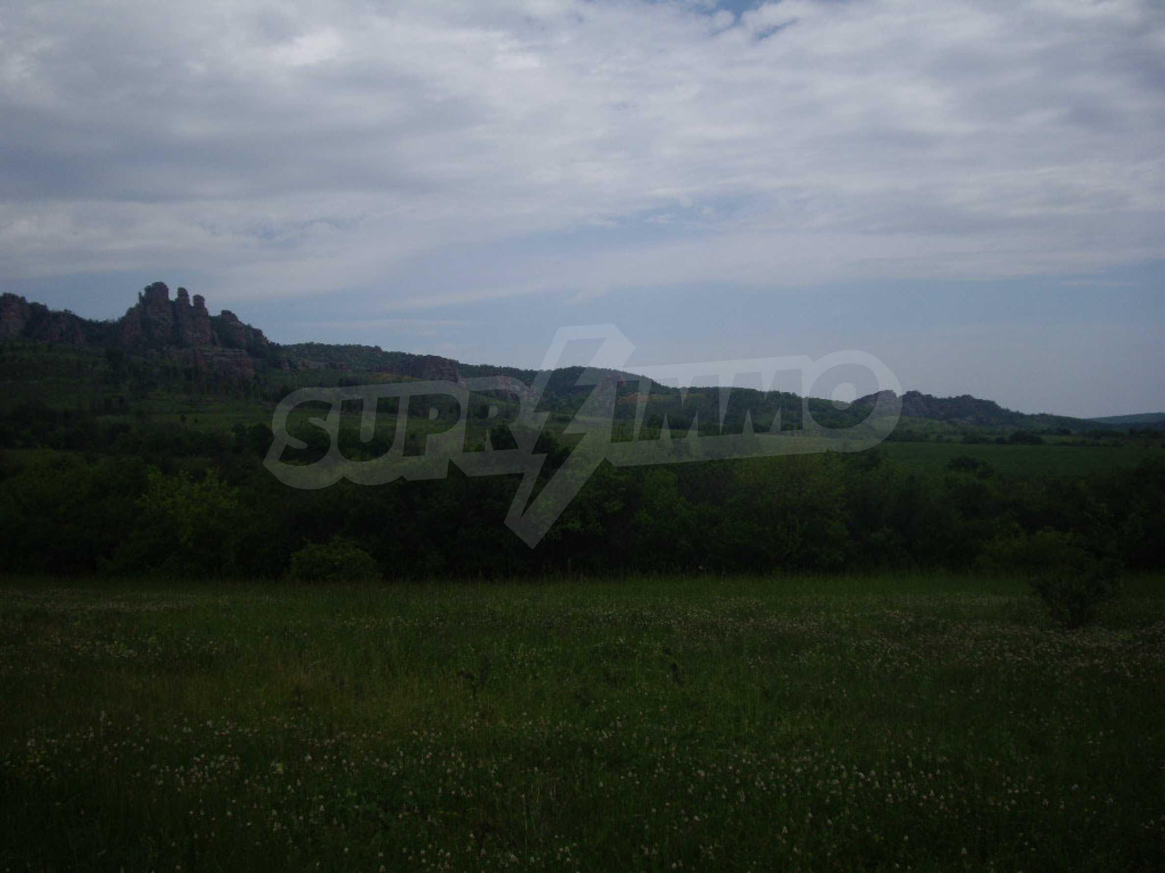 Großes unreguliertes Grundstück 50 km von Vidin entfernt 8