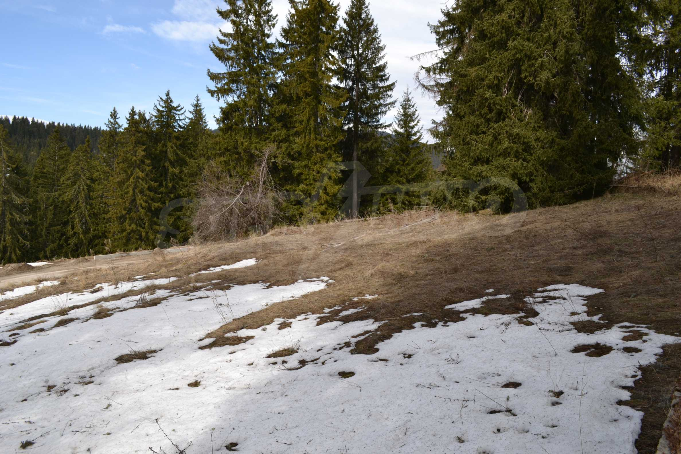 Development land for sale in the center of Pamporovo 3