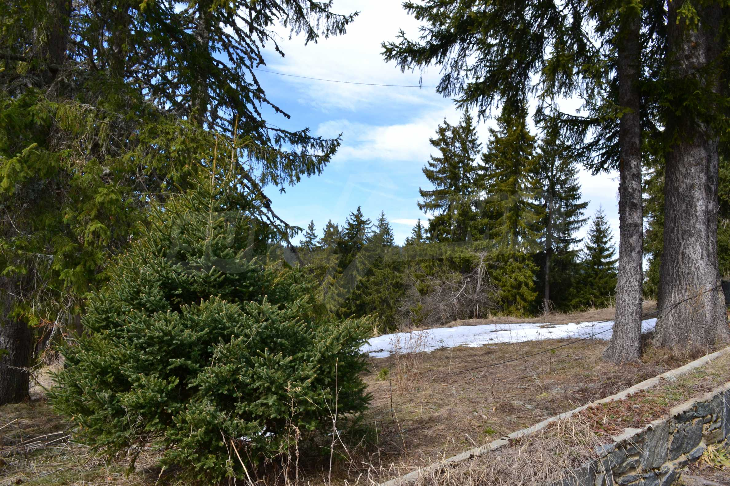 Development land for sale in the center of Pamporovo 6