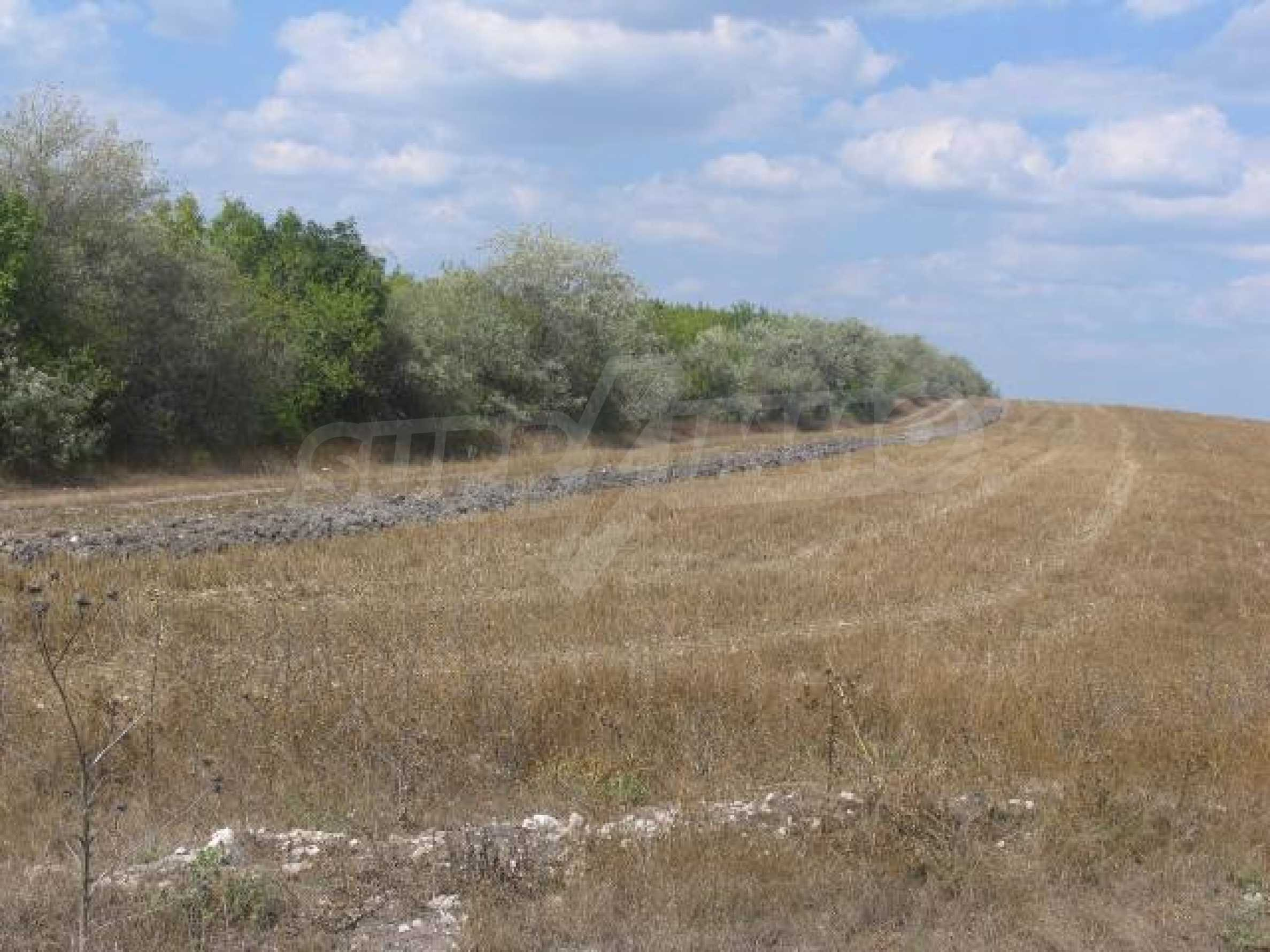 Two agricultural plots of land near Kavarna 5