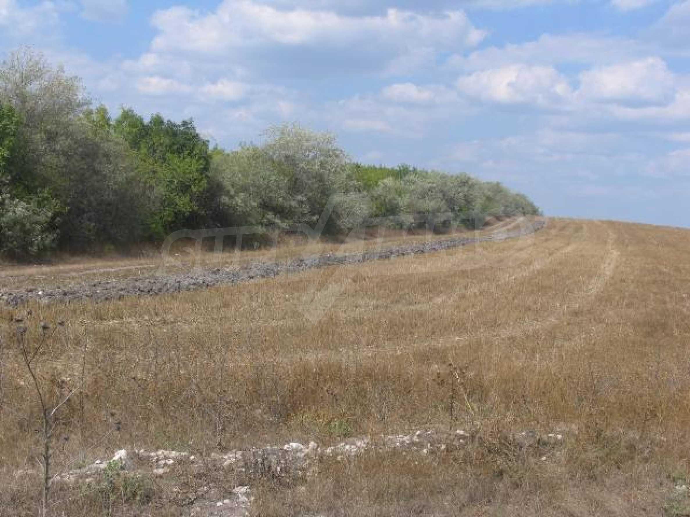 Два сельскохозяйственных участках земли около Каварна 5