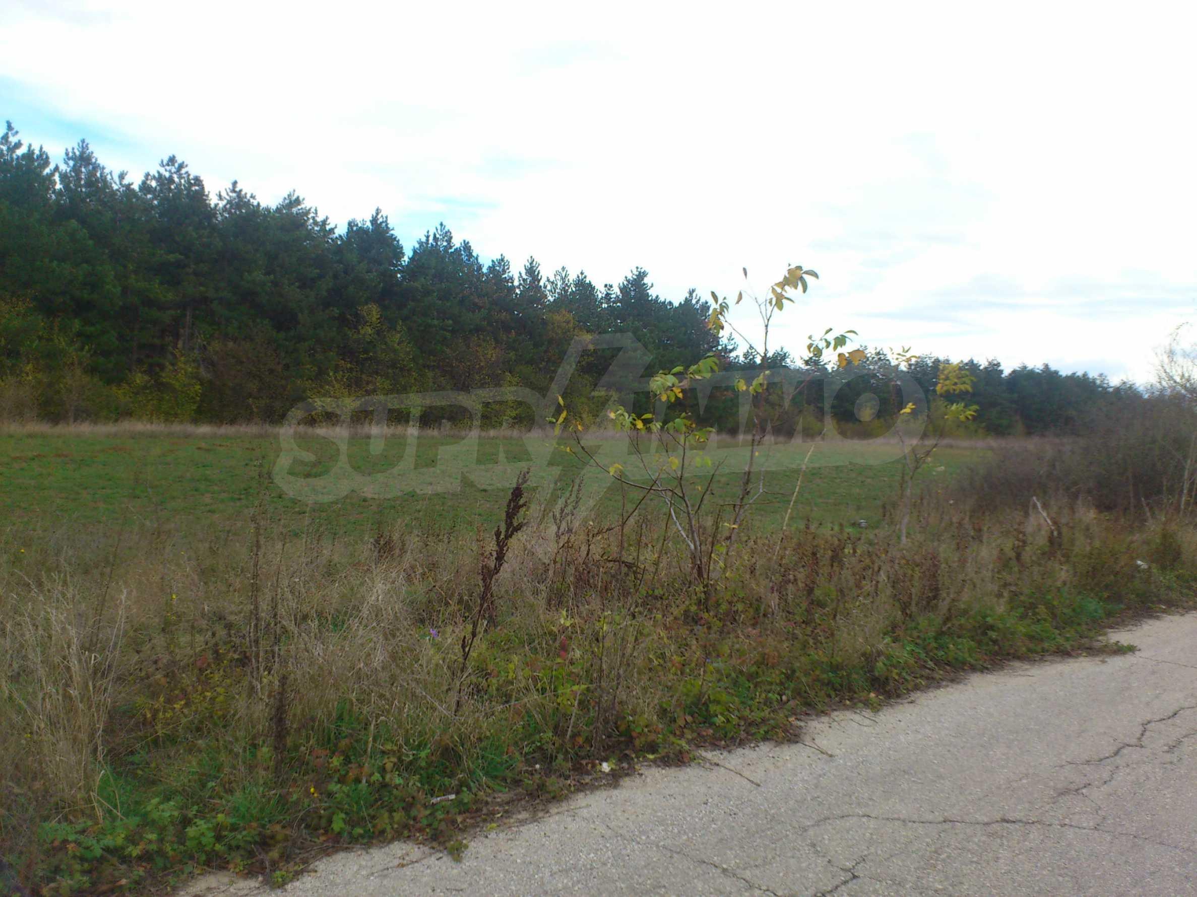 Grundstück 3 km von Veliko Tarnovo entfernt mit Blick auf eine Asphaltstraße 7