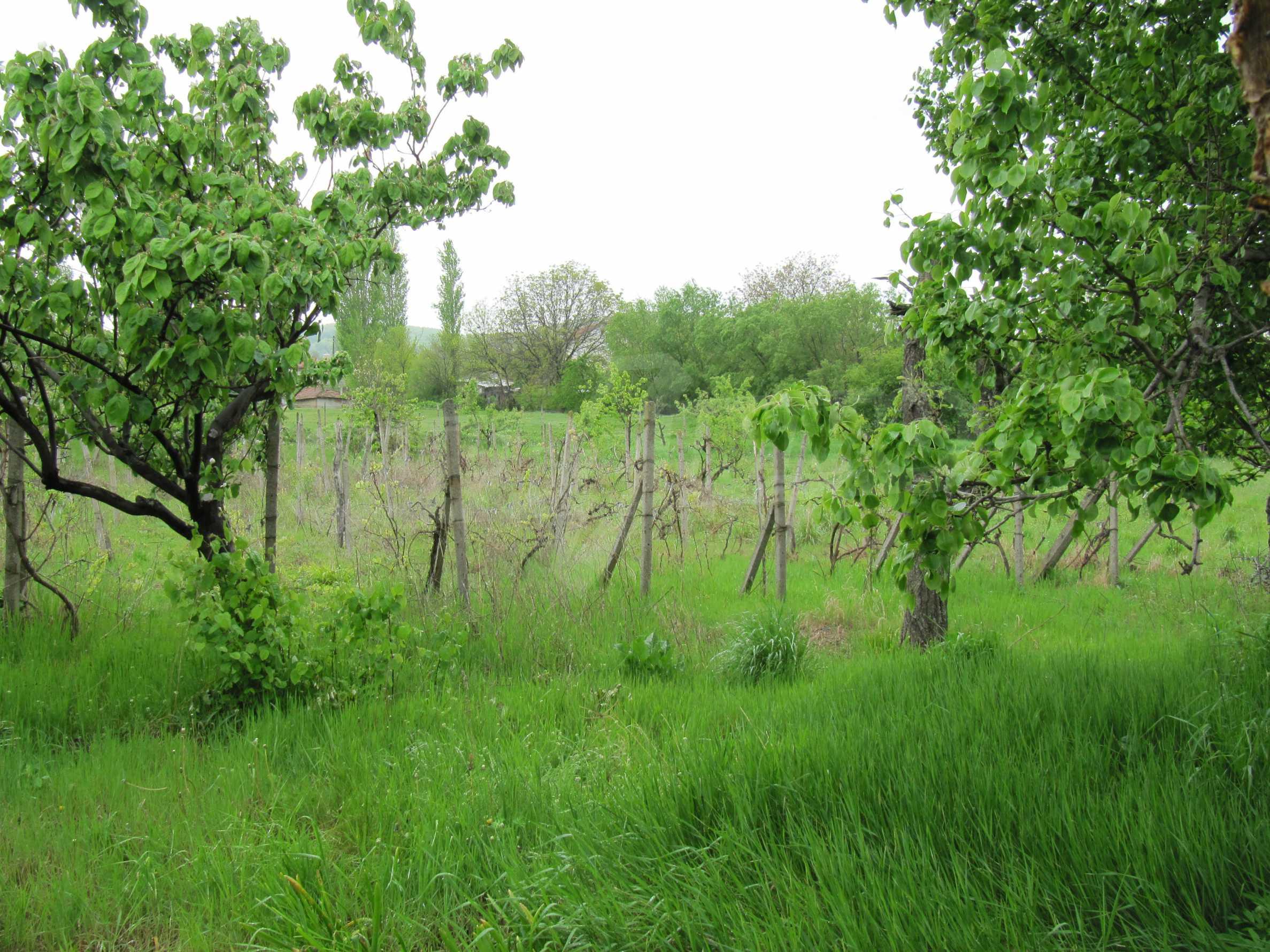 Ausgezeichnetes ländliches Anwesen mit herrlichem Blick auf die Rhodopen bei Kardschali 51
