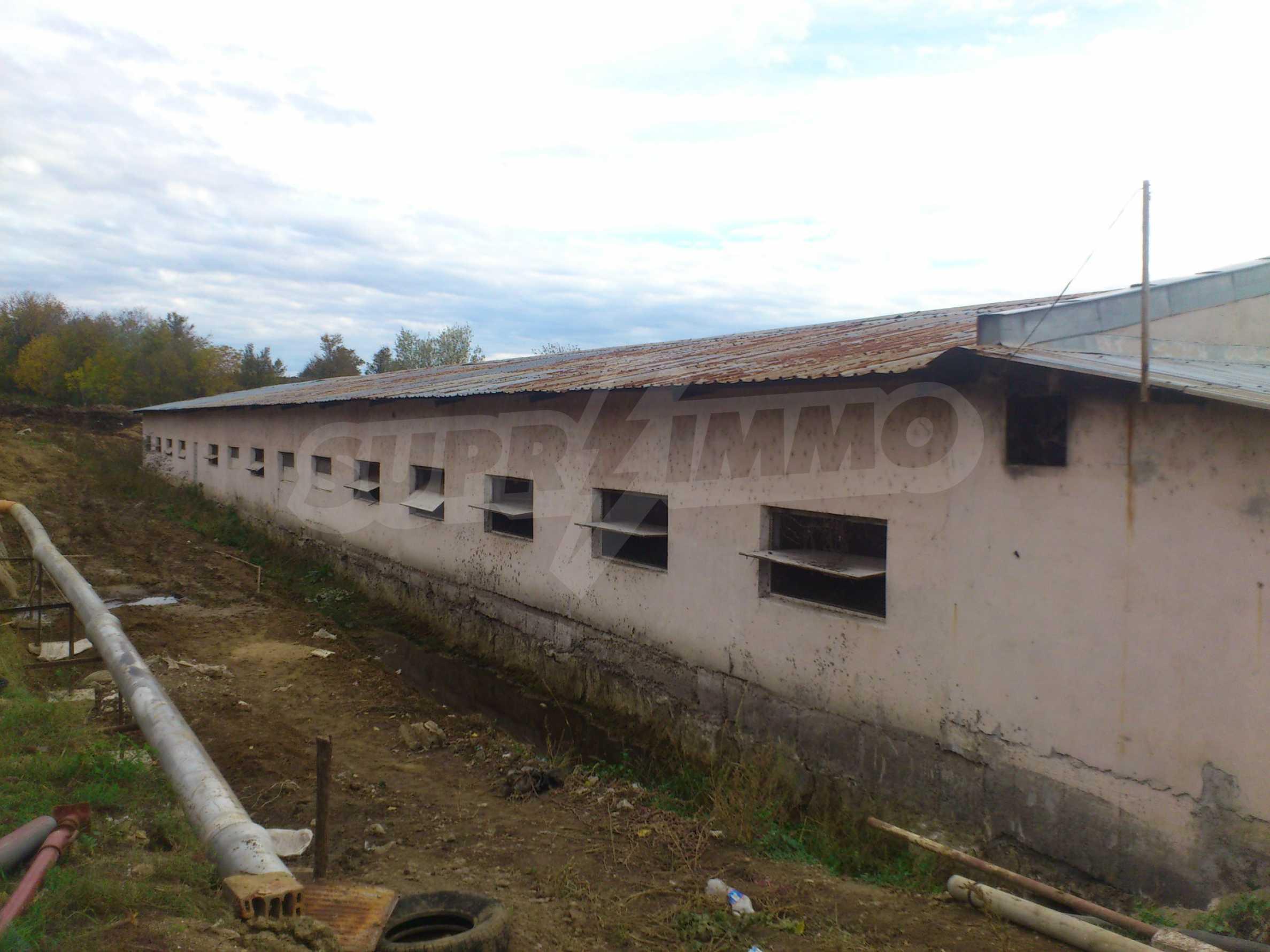 Neues Bauernhaus in einem Dorf in der Nähe von Veliko Tarnovo 14