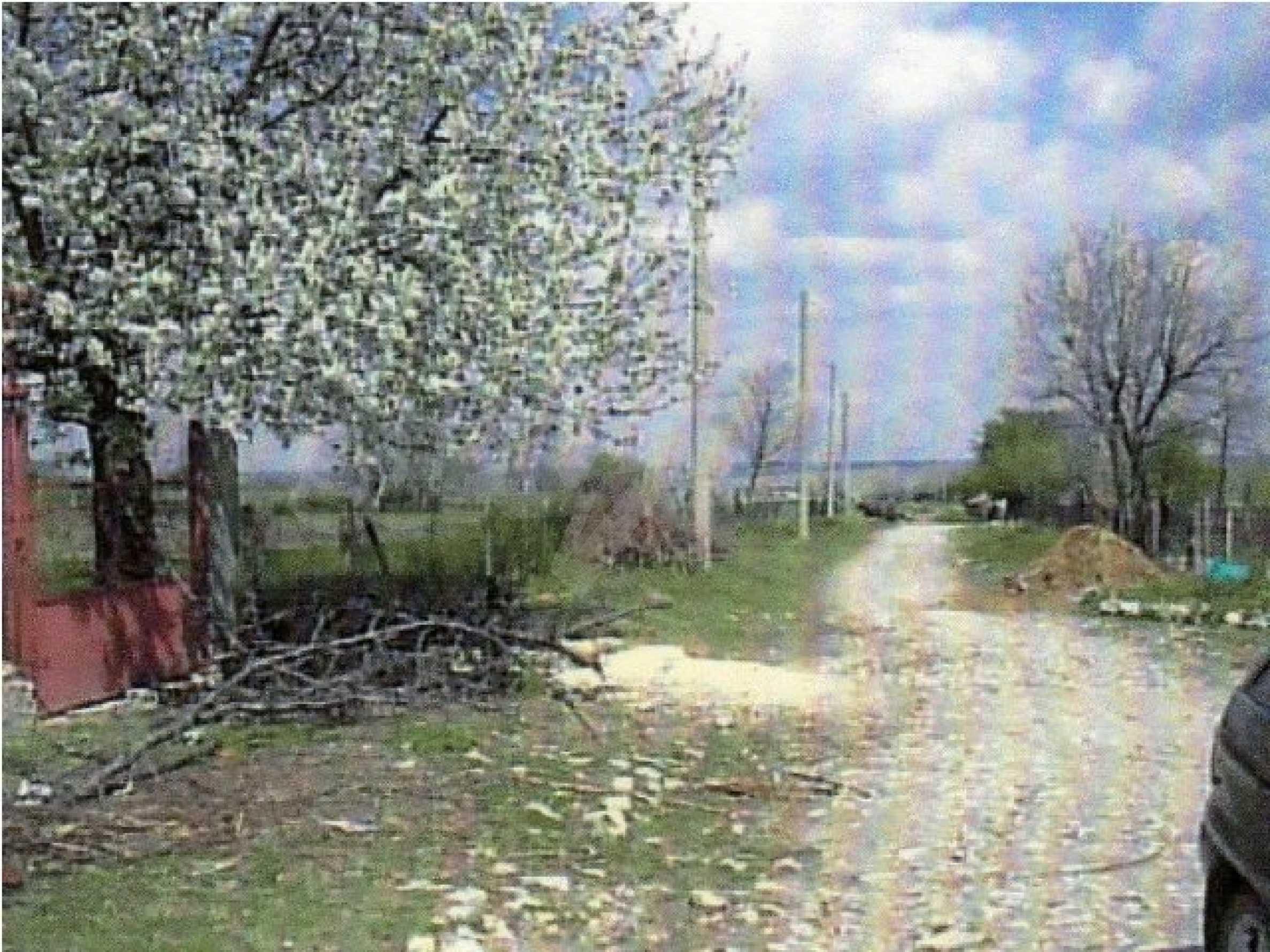 Уютный дом в селе Карапелит 13