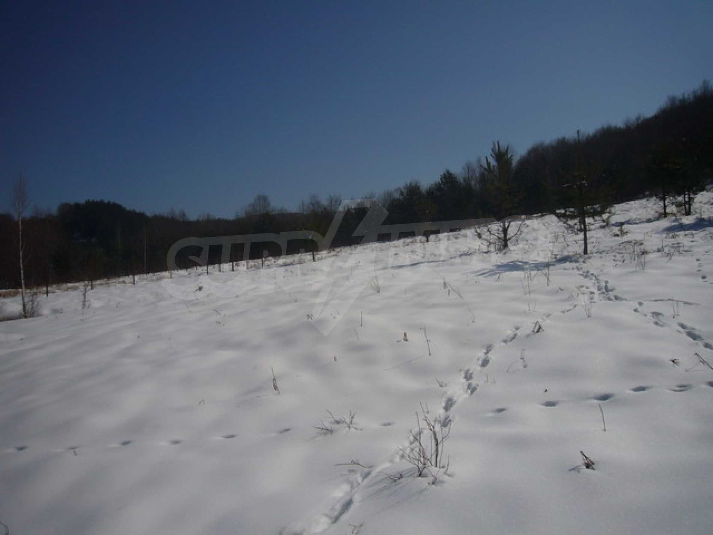 Land for sale near Apriltsi town 3