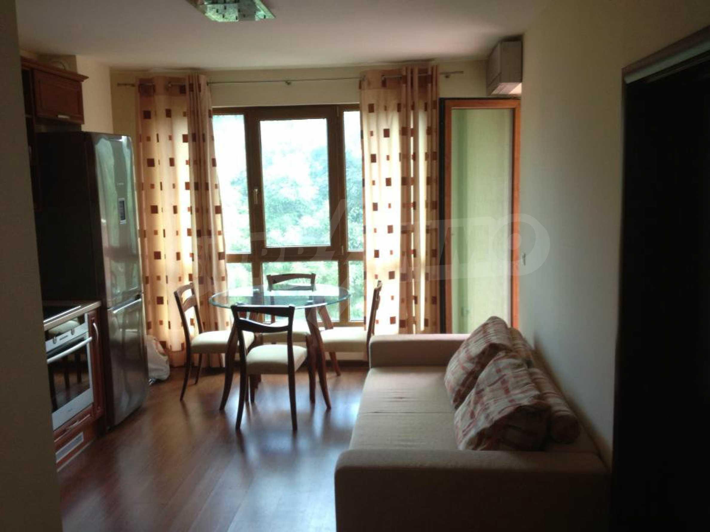 Apartment ''Liza'' 19