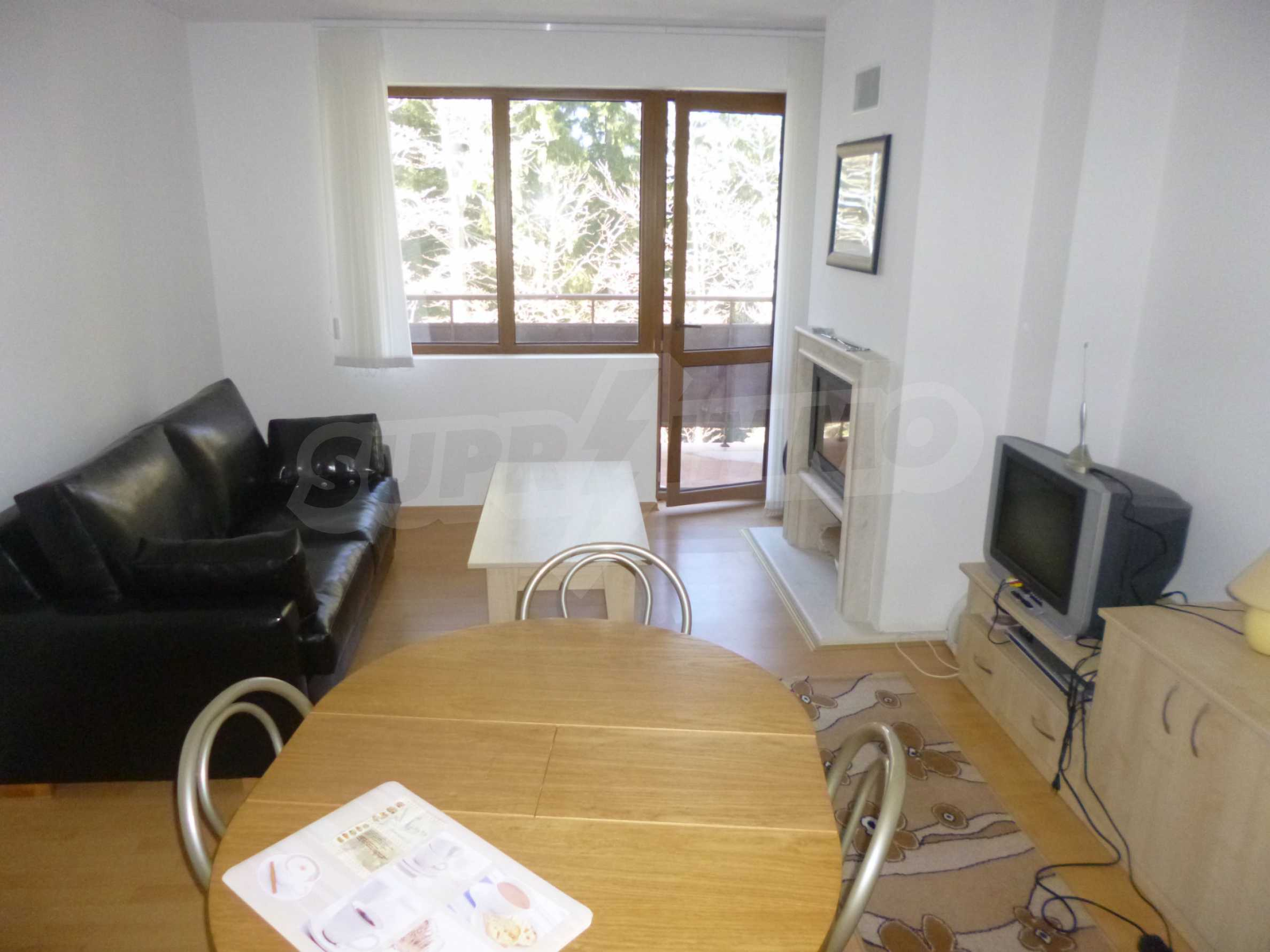 Furnished apartment near the ski slopes of Pamporovo