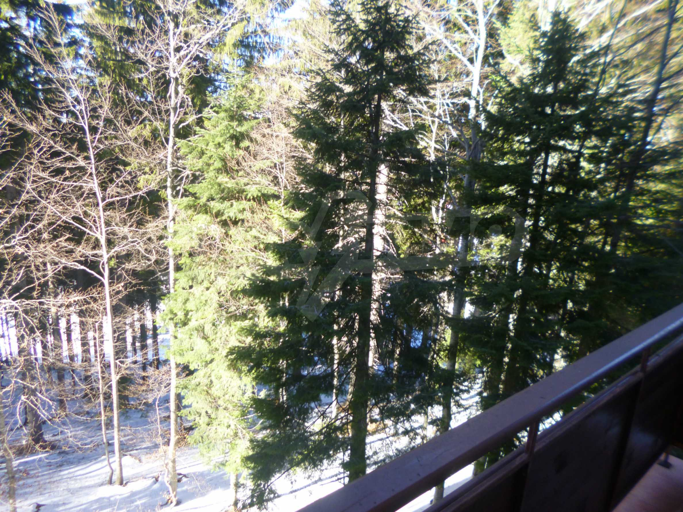 Furnished apartment near the ski slopes of Pamporovo 9