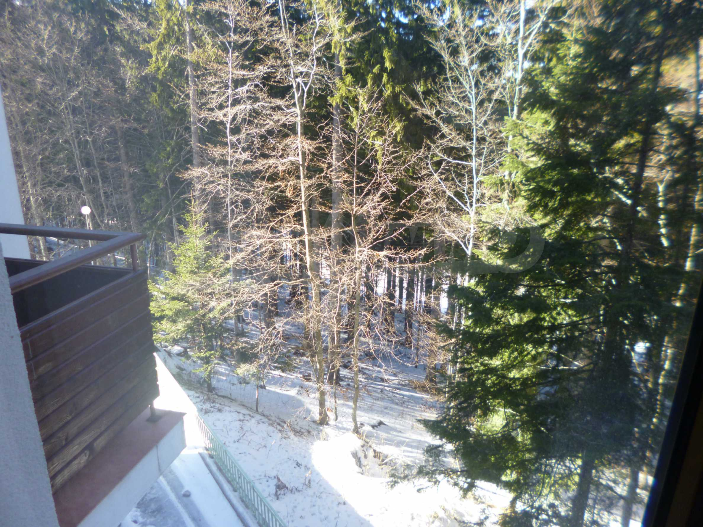 Furnished apartment near the ski slopes of Pamporovo 14