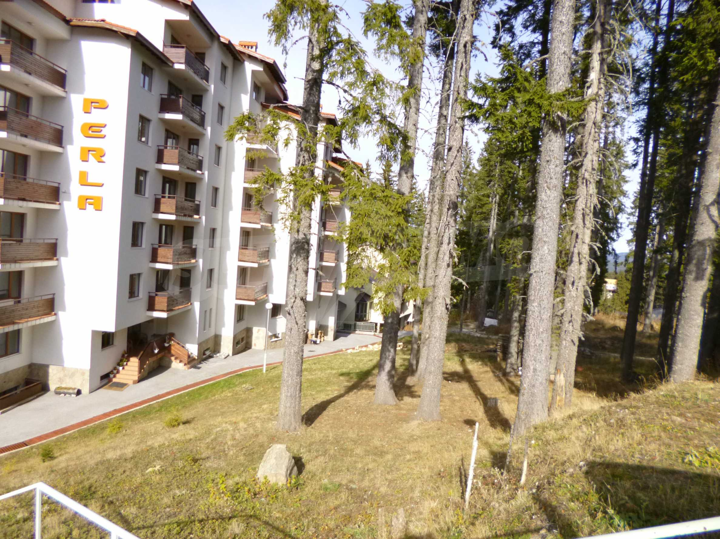 Furnished apartment near the ski slopes of Pamporovo 18