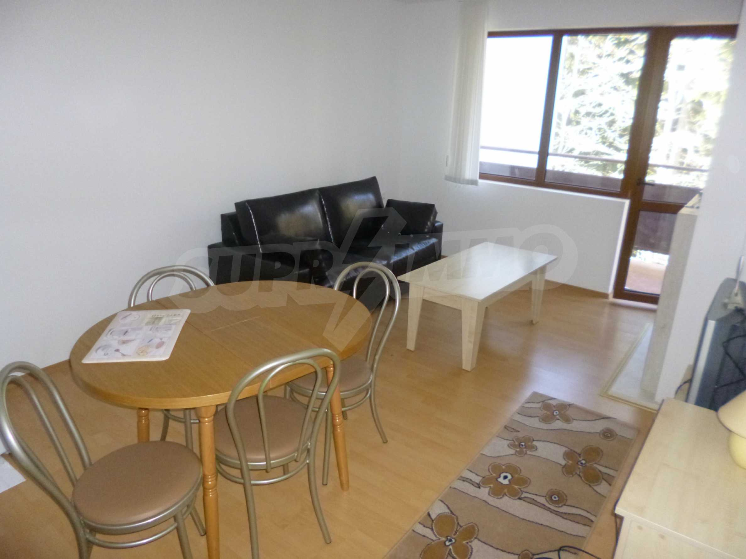 Furnished apartment near the ski slopes of Pamporovo 3