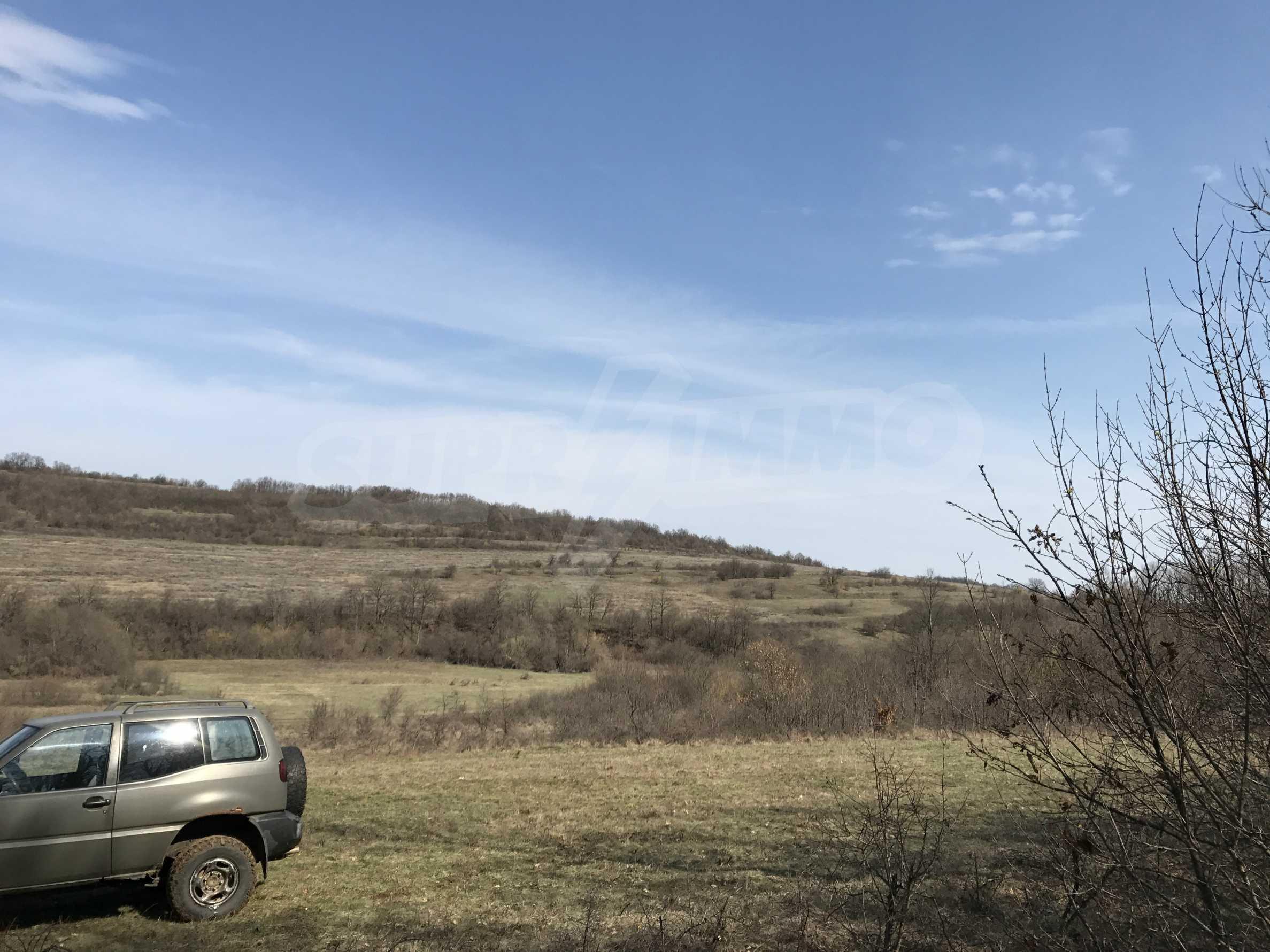 Горски масив  до село на 20 км. от гр. Велико Търново  34