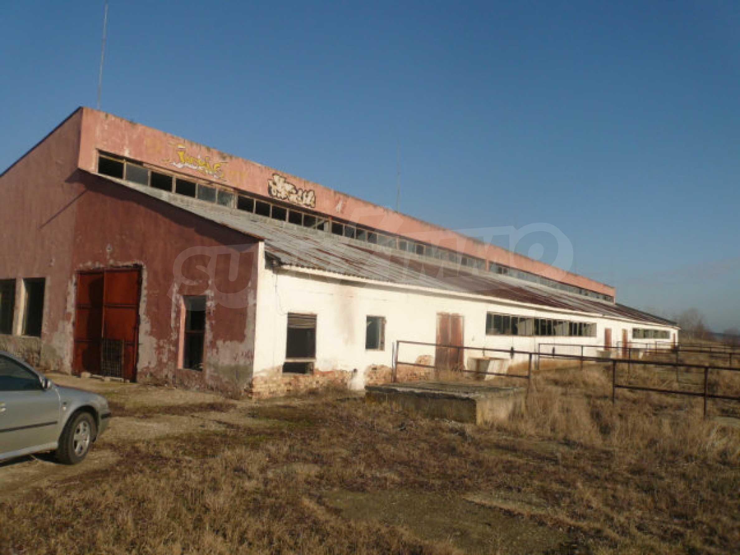 Dairy farm in good condition