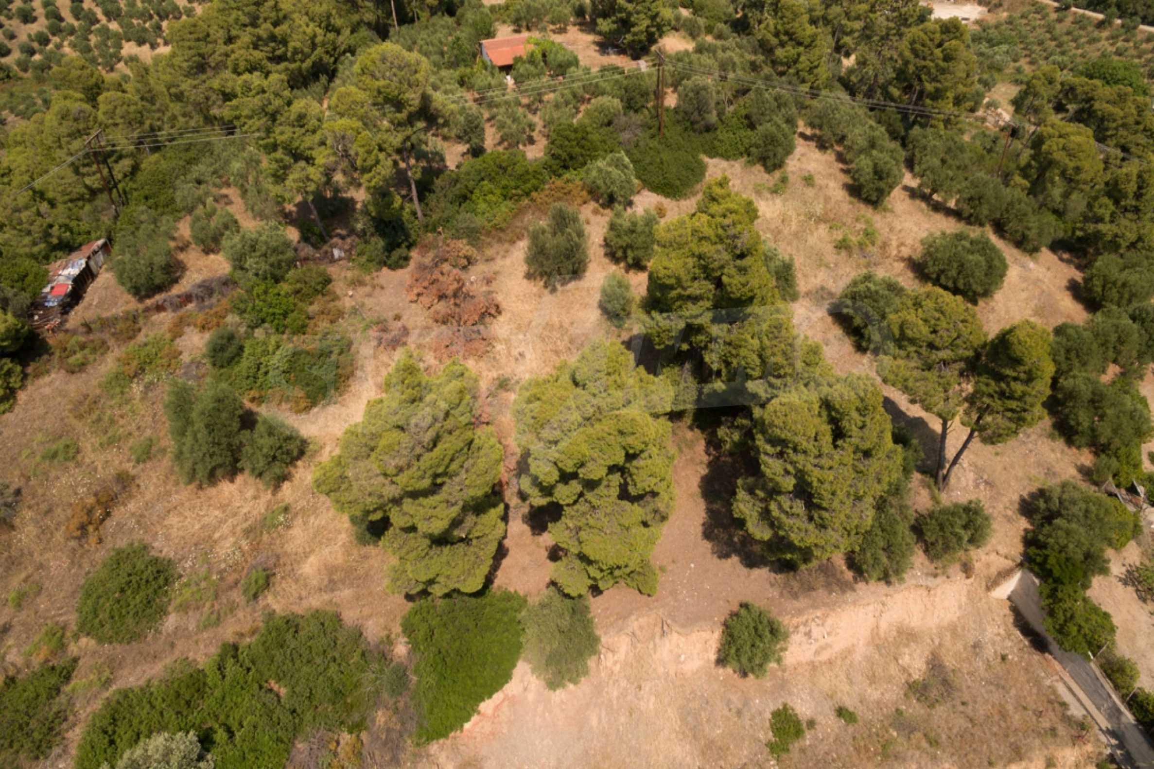 Земеделска земя  в  Неос Мармарас 1