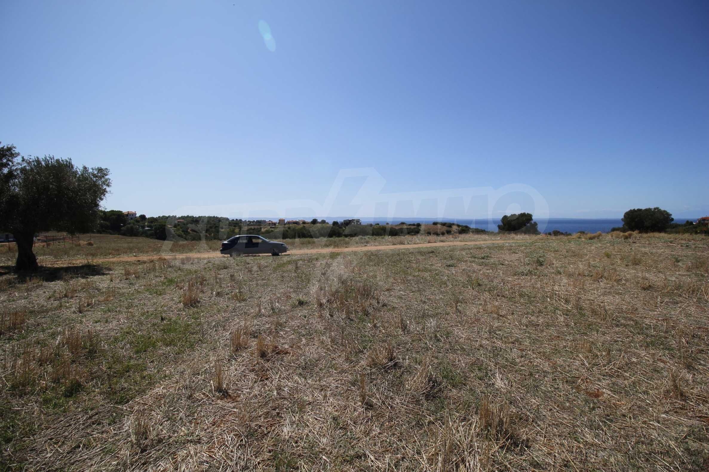 Земеделска земя  в  Никити 12