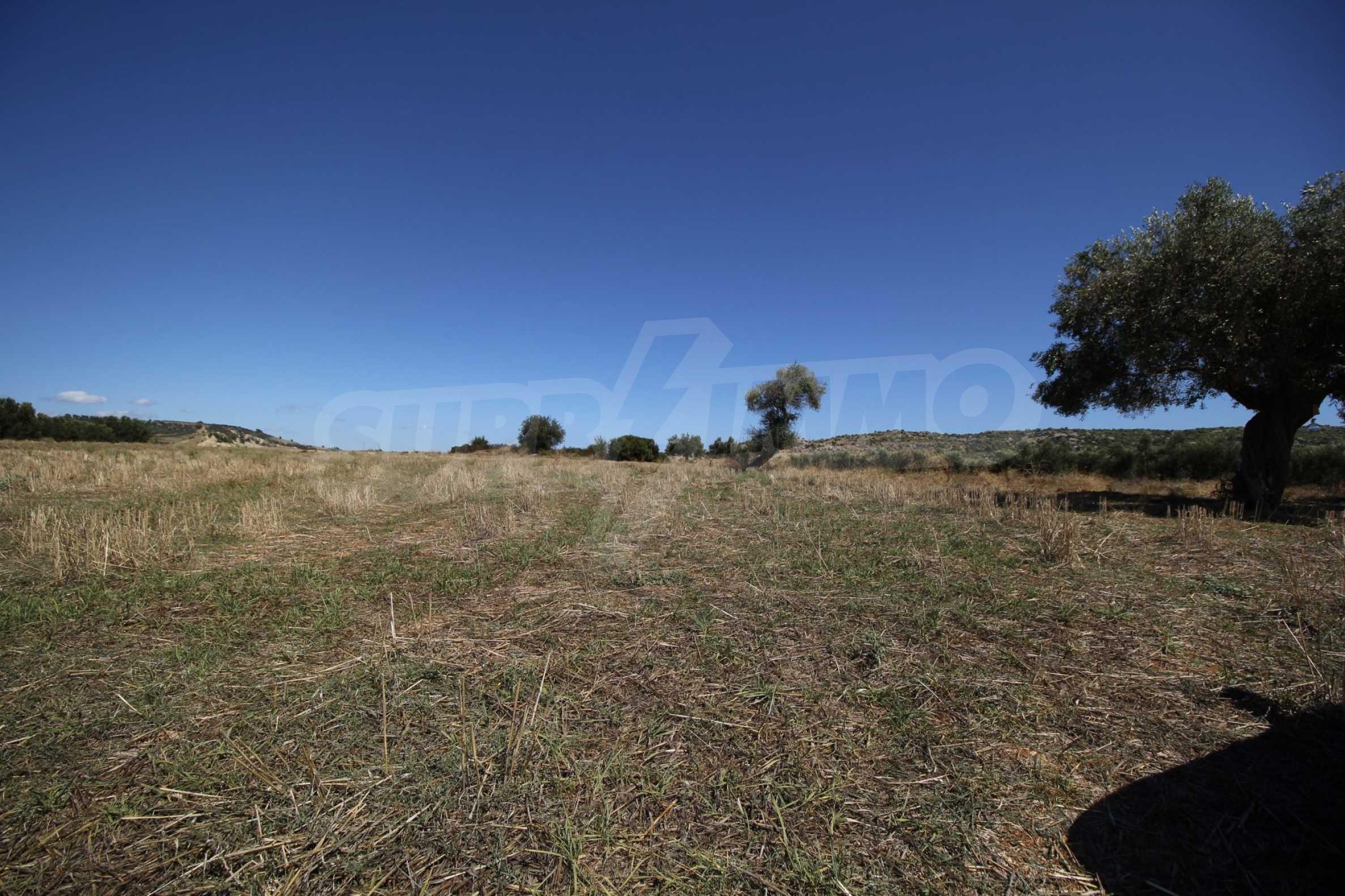 Земеделска земя  в  Никити 3