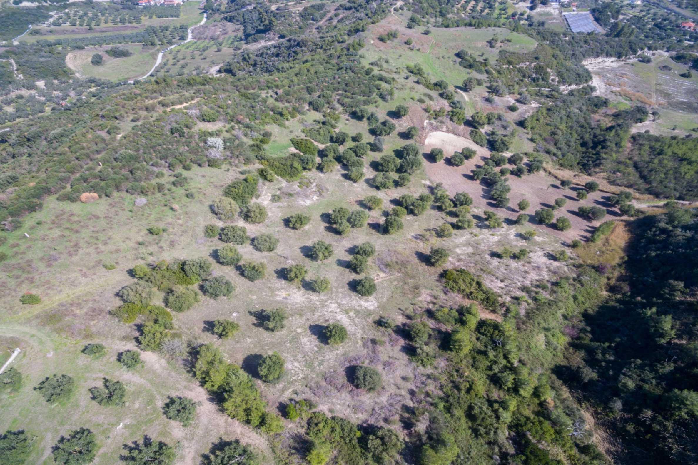 Земеделска земя  в  Полихроно 4