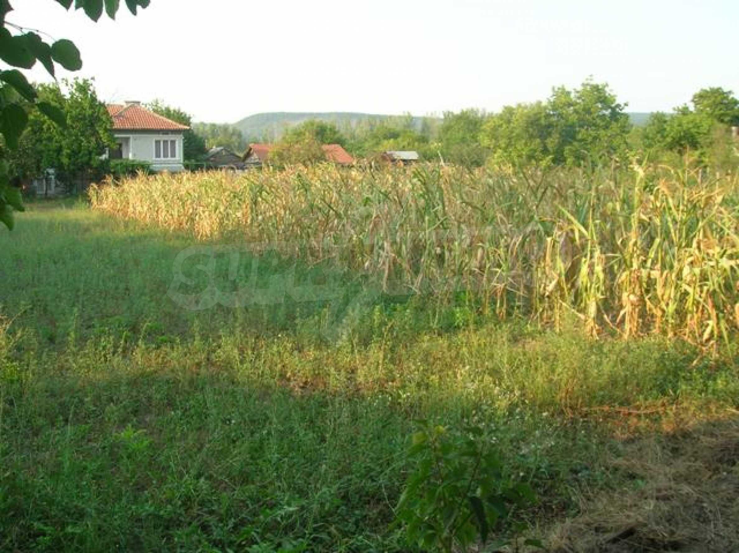 Grundstück im Dorf Sindel 1