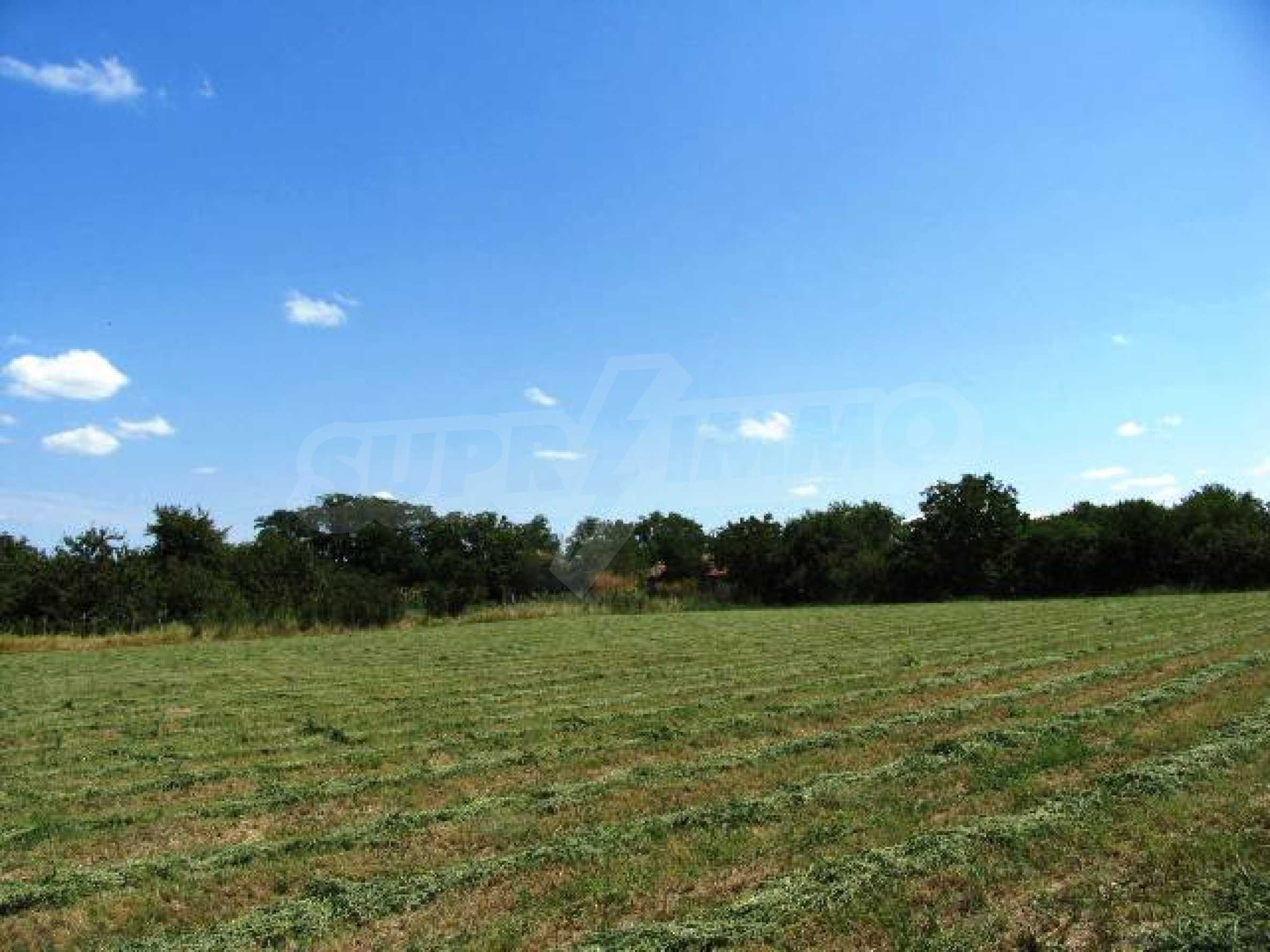 An extremely hot offer for regulated plots for sale by a beautiful lake 16 miles away from the sea 10