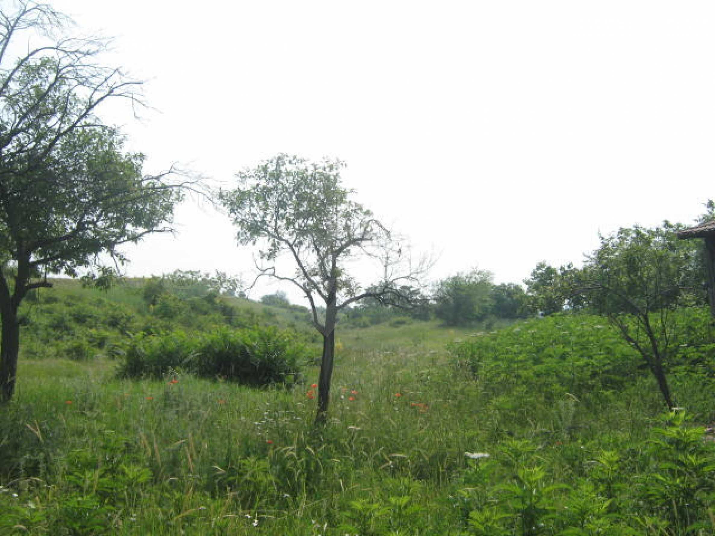 Селска къща с голям двор на 13 км от Видин 7