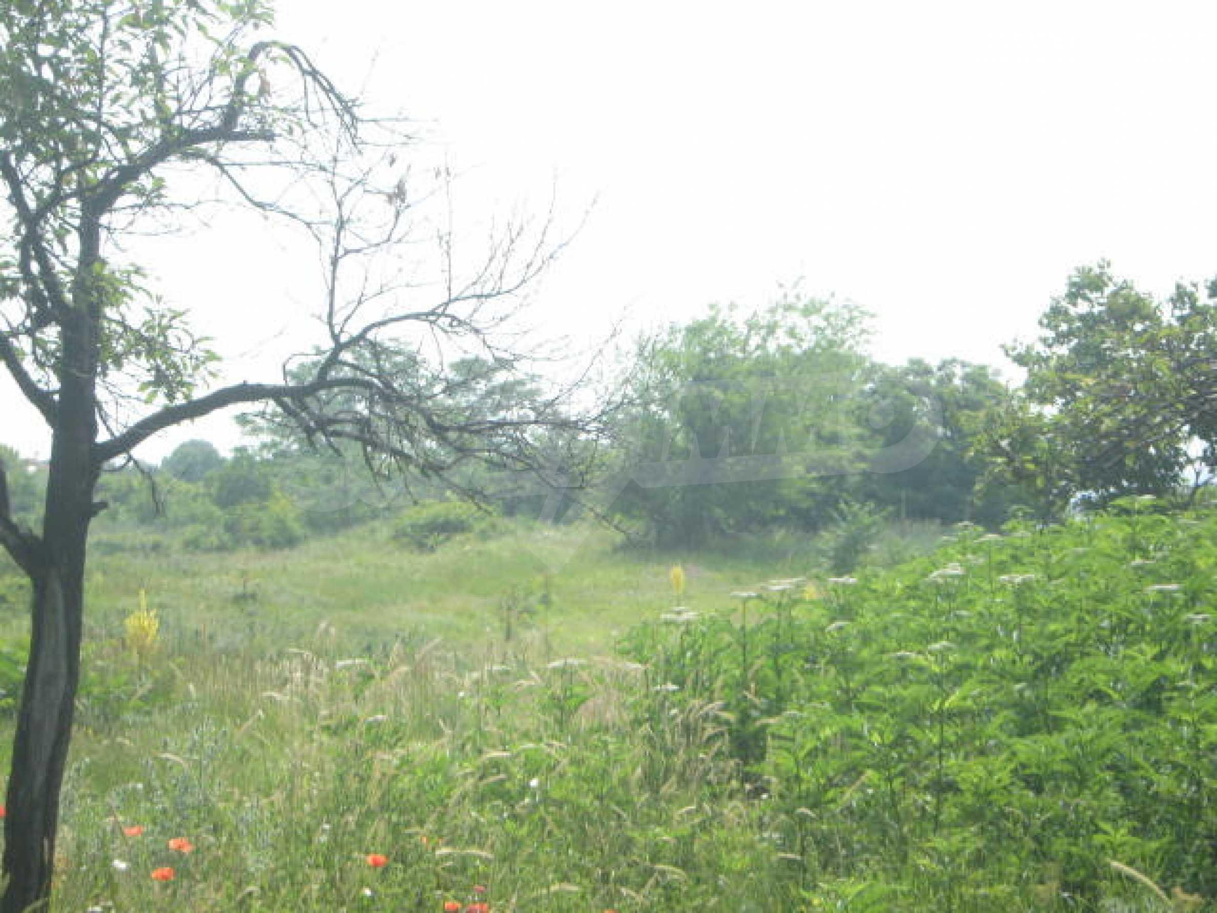 Селска къща с голям двор на 13 км от Видин 8