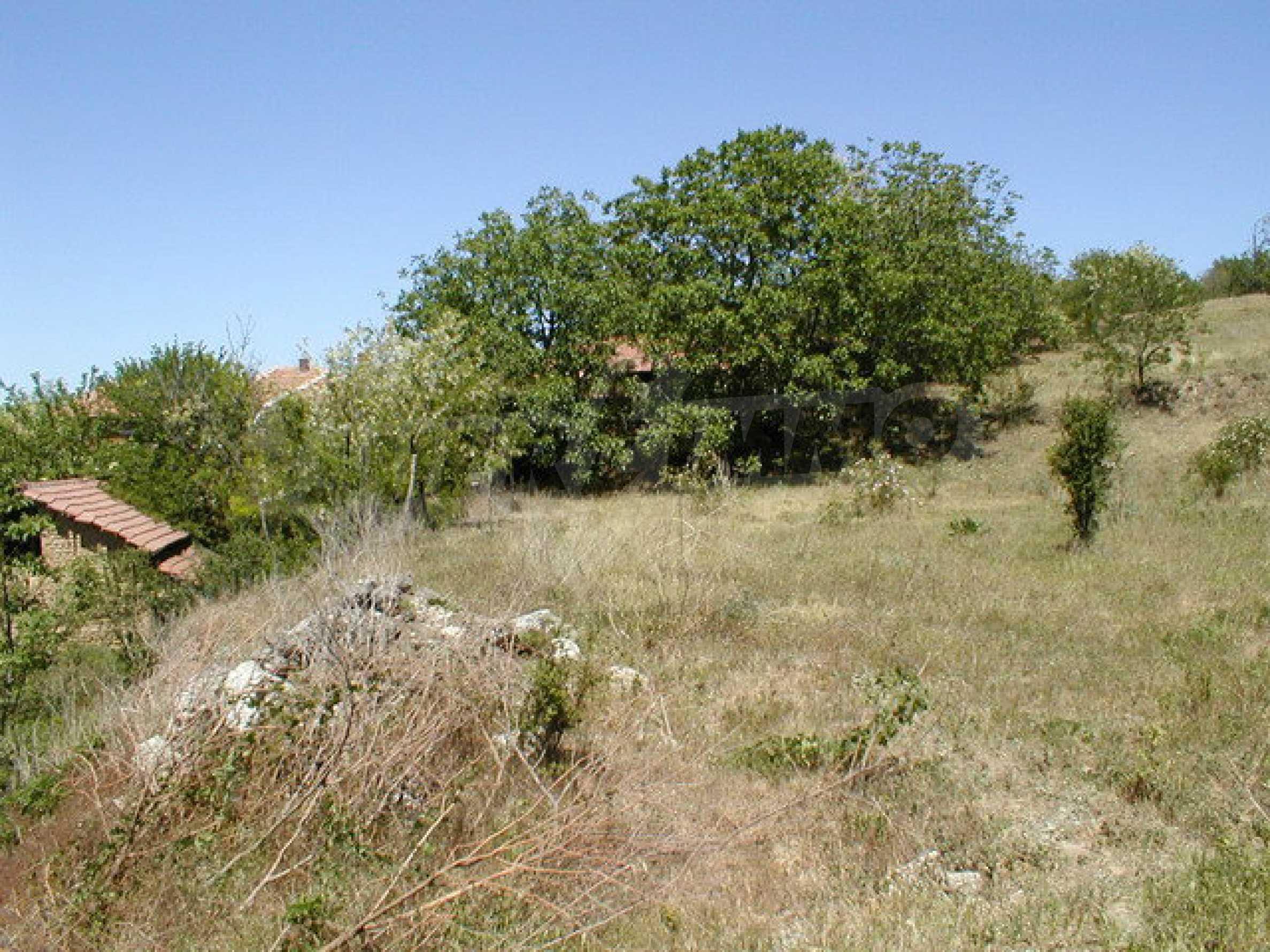 Полностью отремонтированный дом с большим садом и видом на Дунай 23