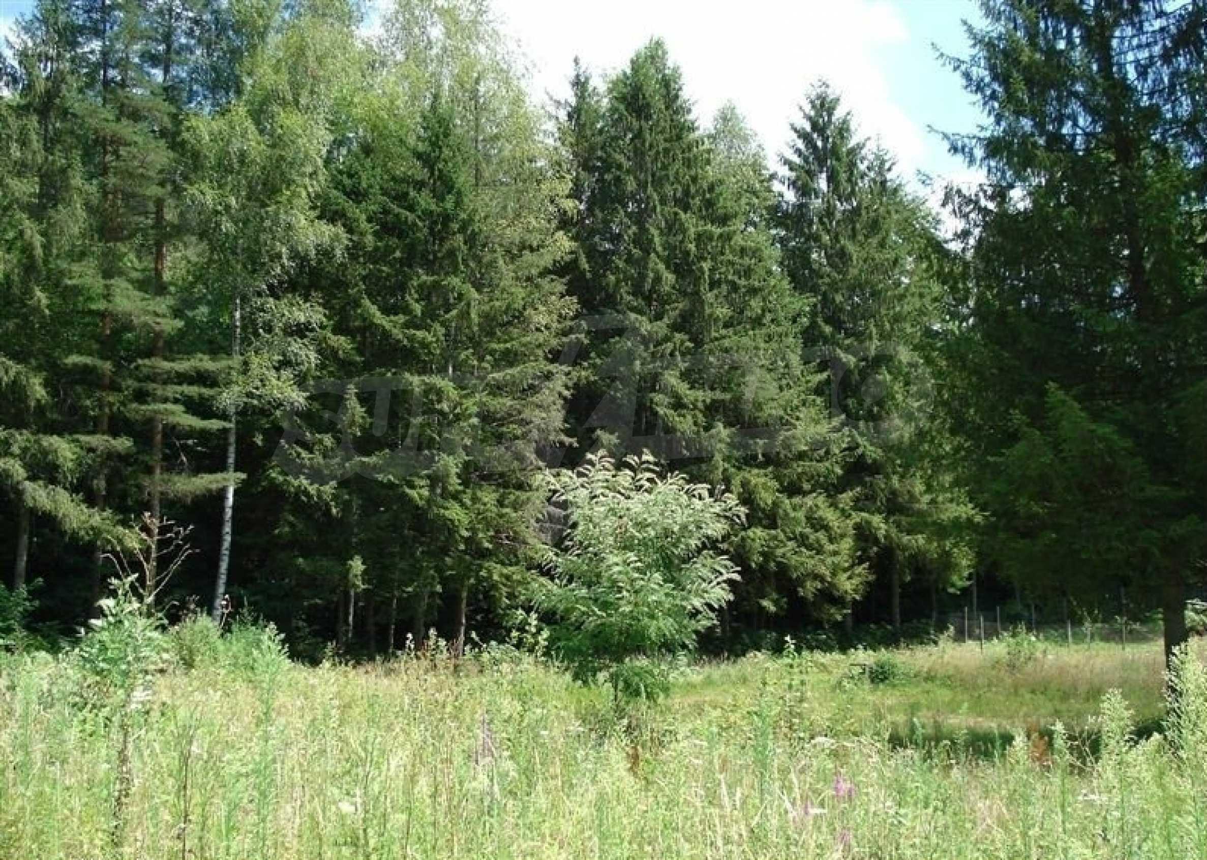 Geregeltes Grundstück mit Baugenehmigung im Dorf Ribaritsa 10
