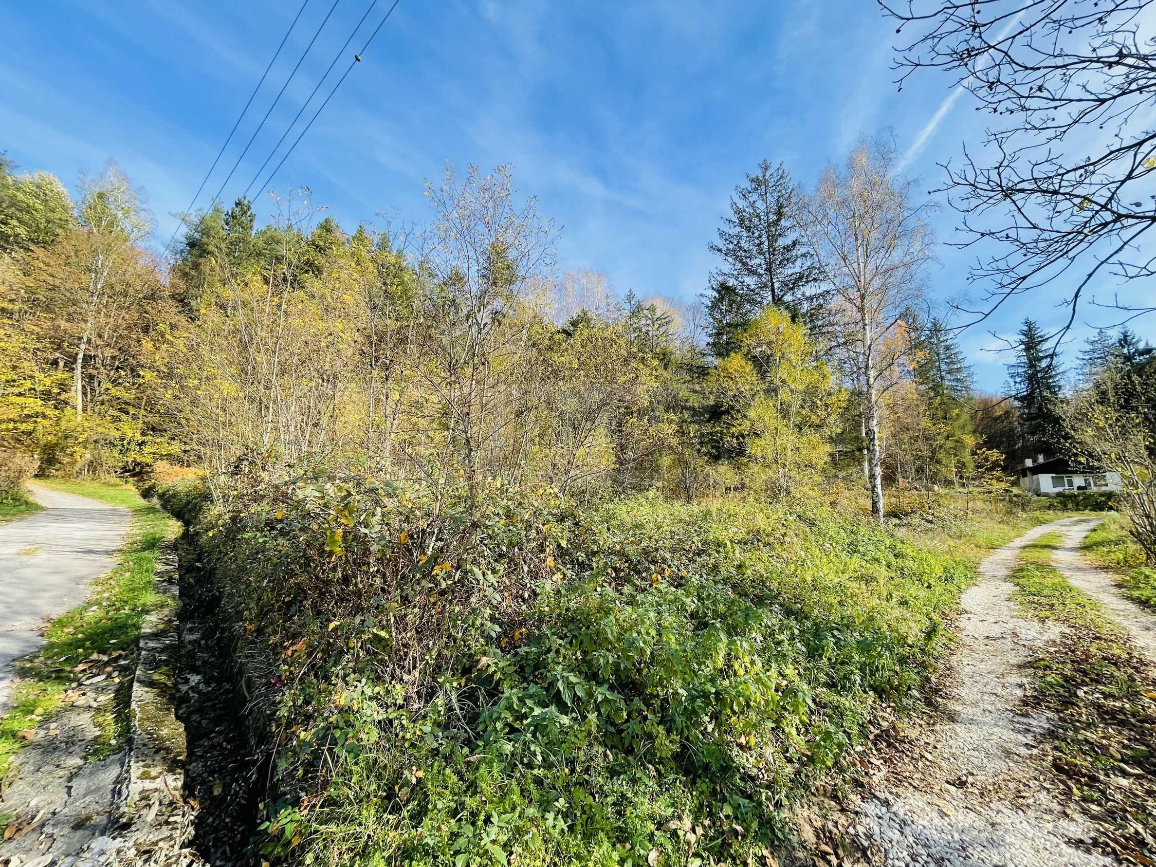 Geregeltes Grundstück mit Baugenehmigung im Dorf Ribaritsa 6