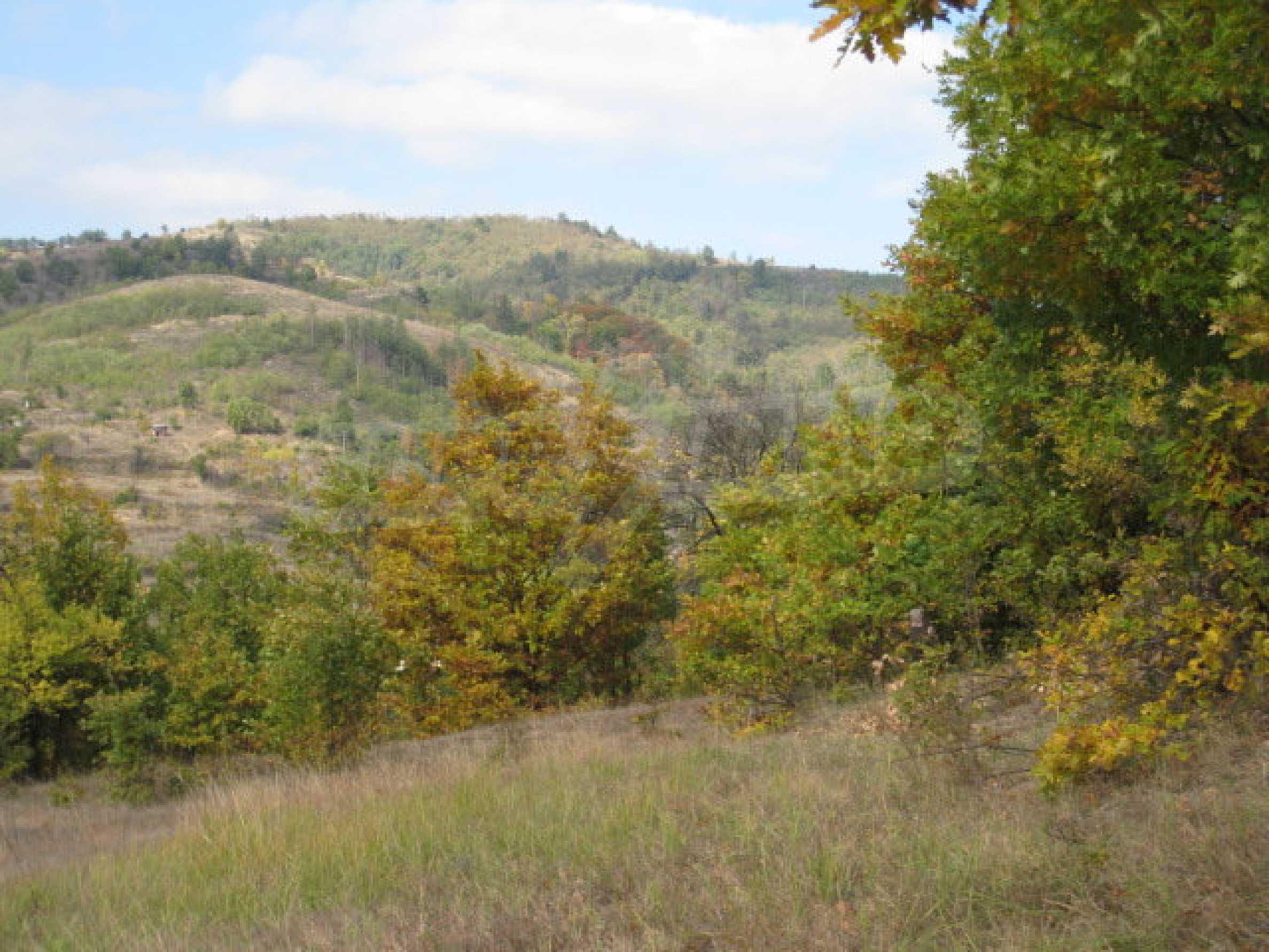 Development land near the town of Kostenets 9