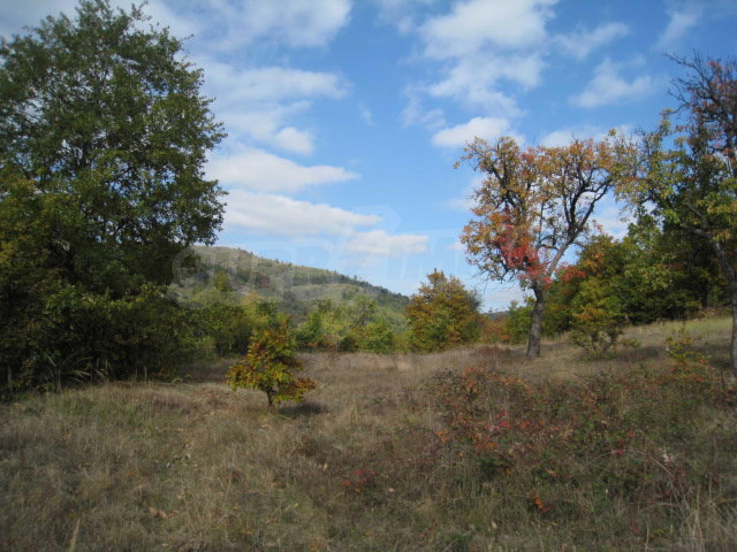 Development land near the town of Kostenets 3