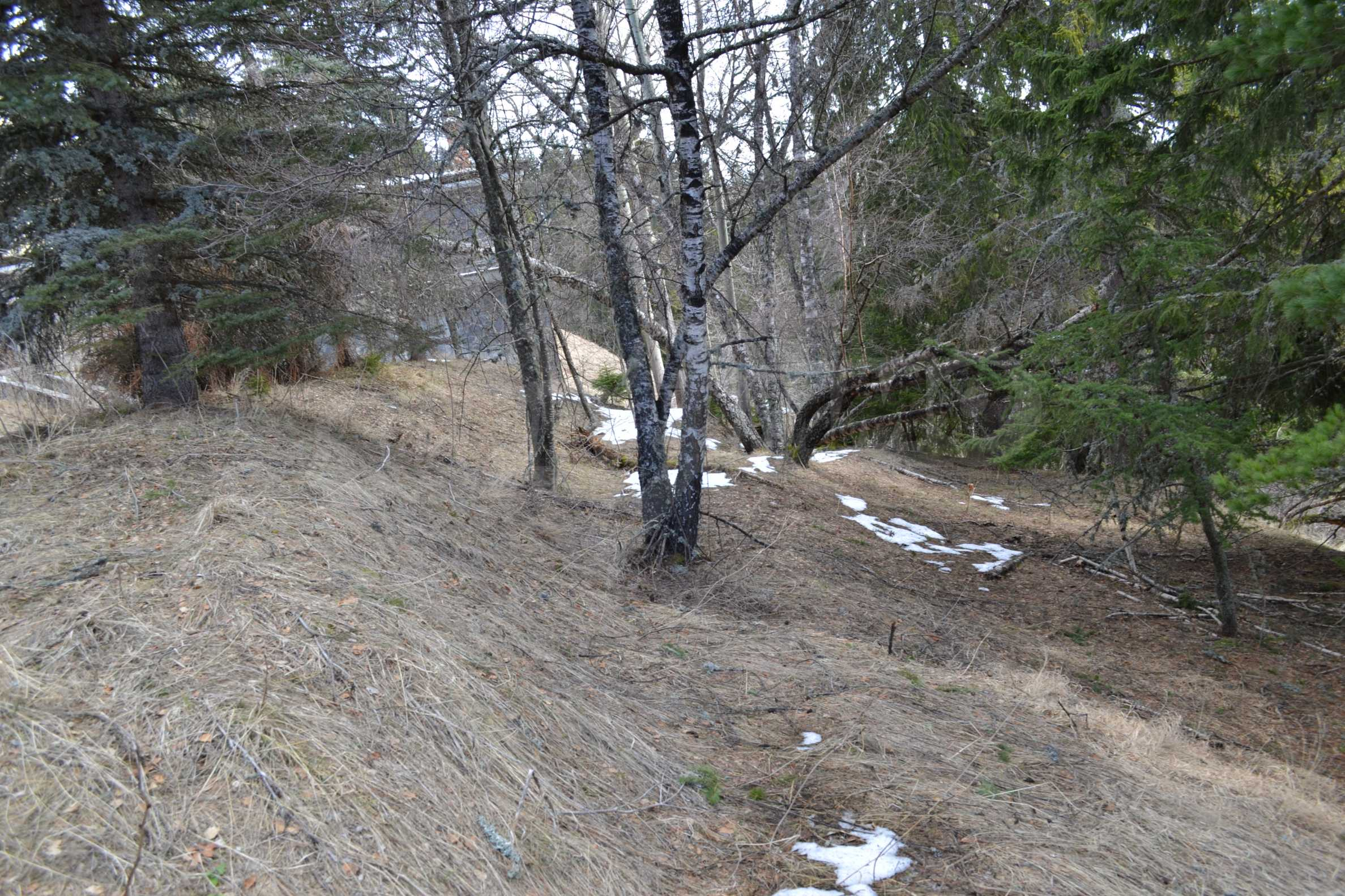 Plot of land near the center of Pamporovo with great view and view 3