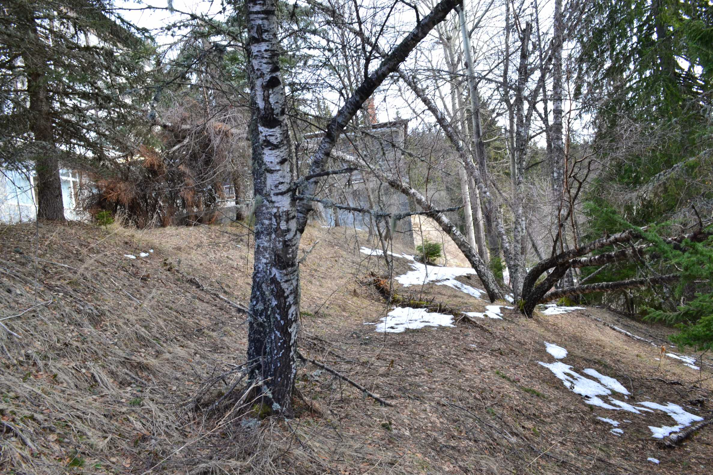 Plot of land near the center of Pamporovo with great view and view 4