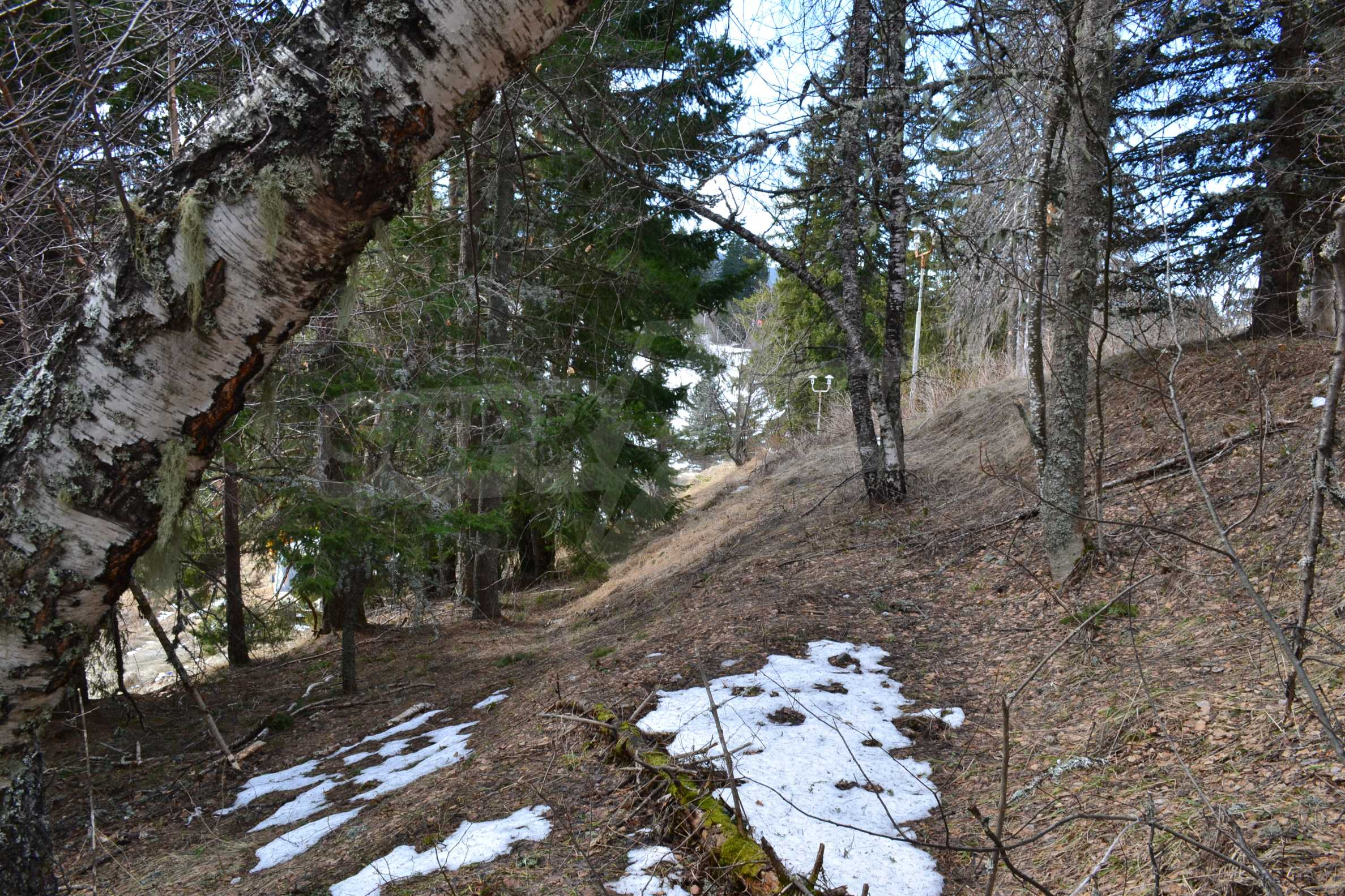 Plot of land near the center of Pamporovo with great view and view 5