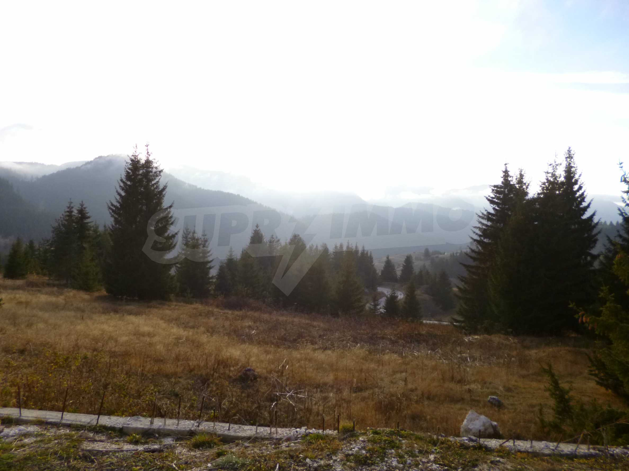 Top floor apartment in Pamporovo 20