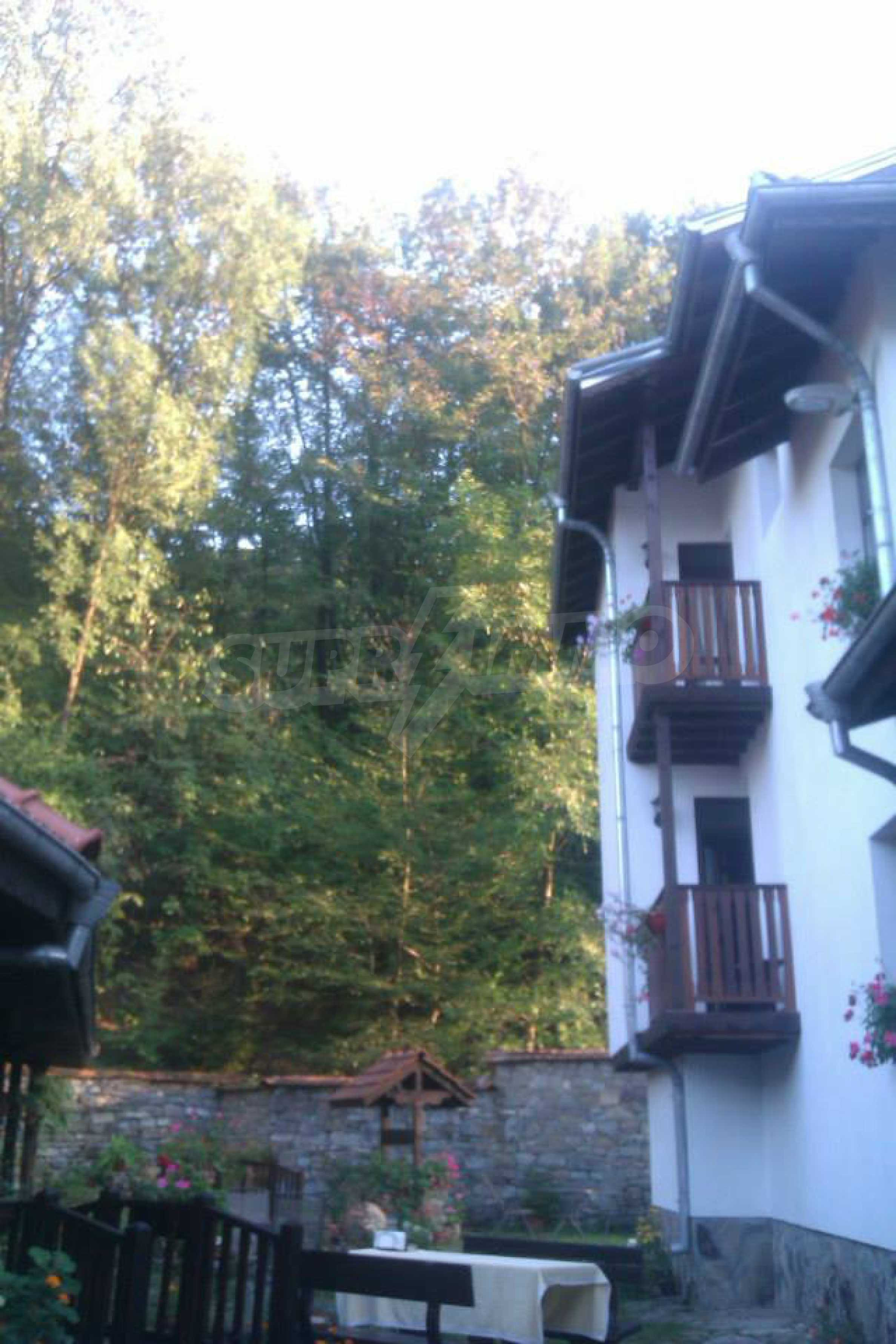 Gemütliches Hotel mit Pool im Herzen des Balkangebirges 53