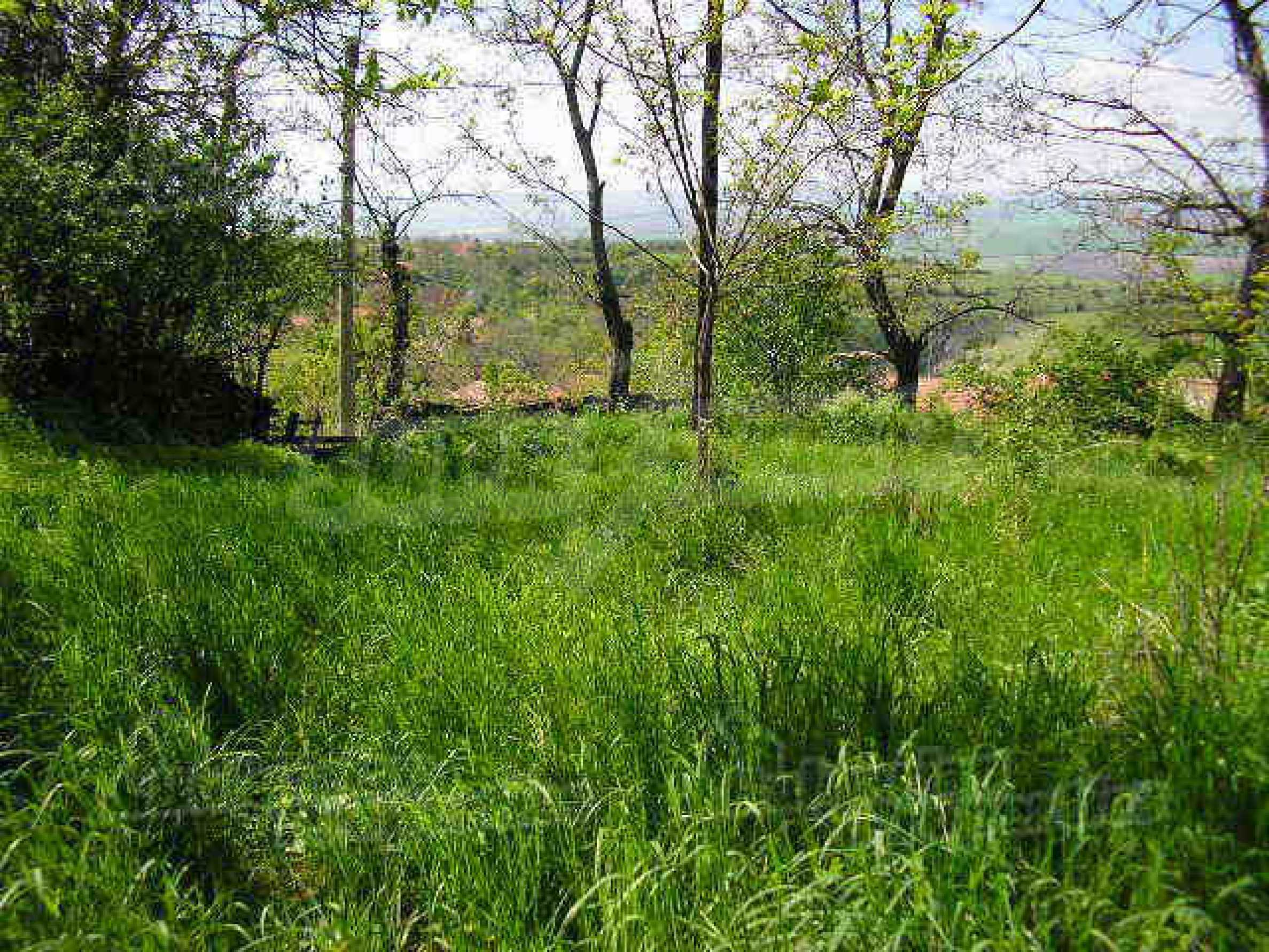 Two-storey rural property with spacious garden near Lovech 10