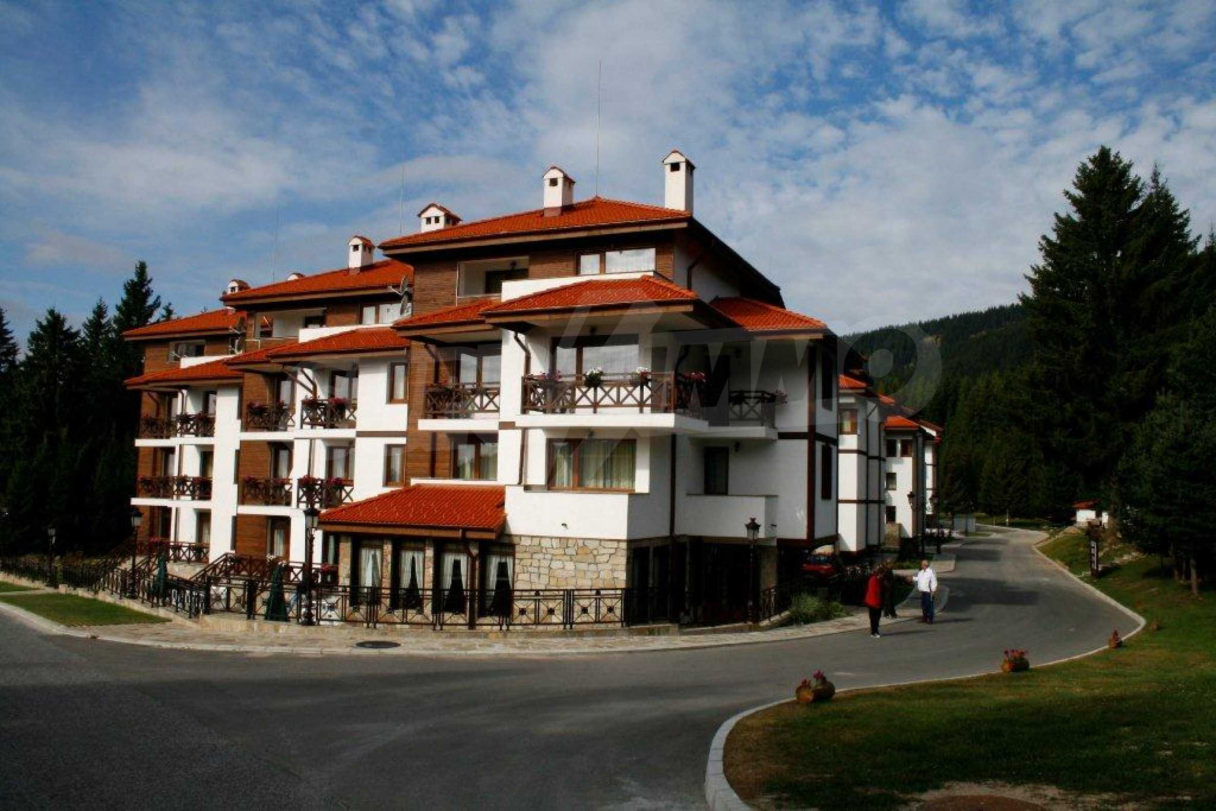 1-bedroom apartment in Pamporovo 29