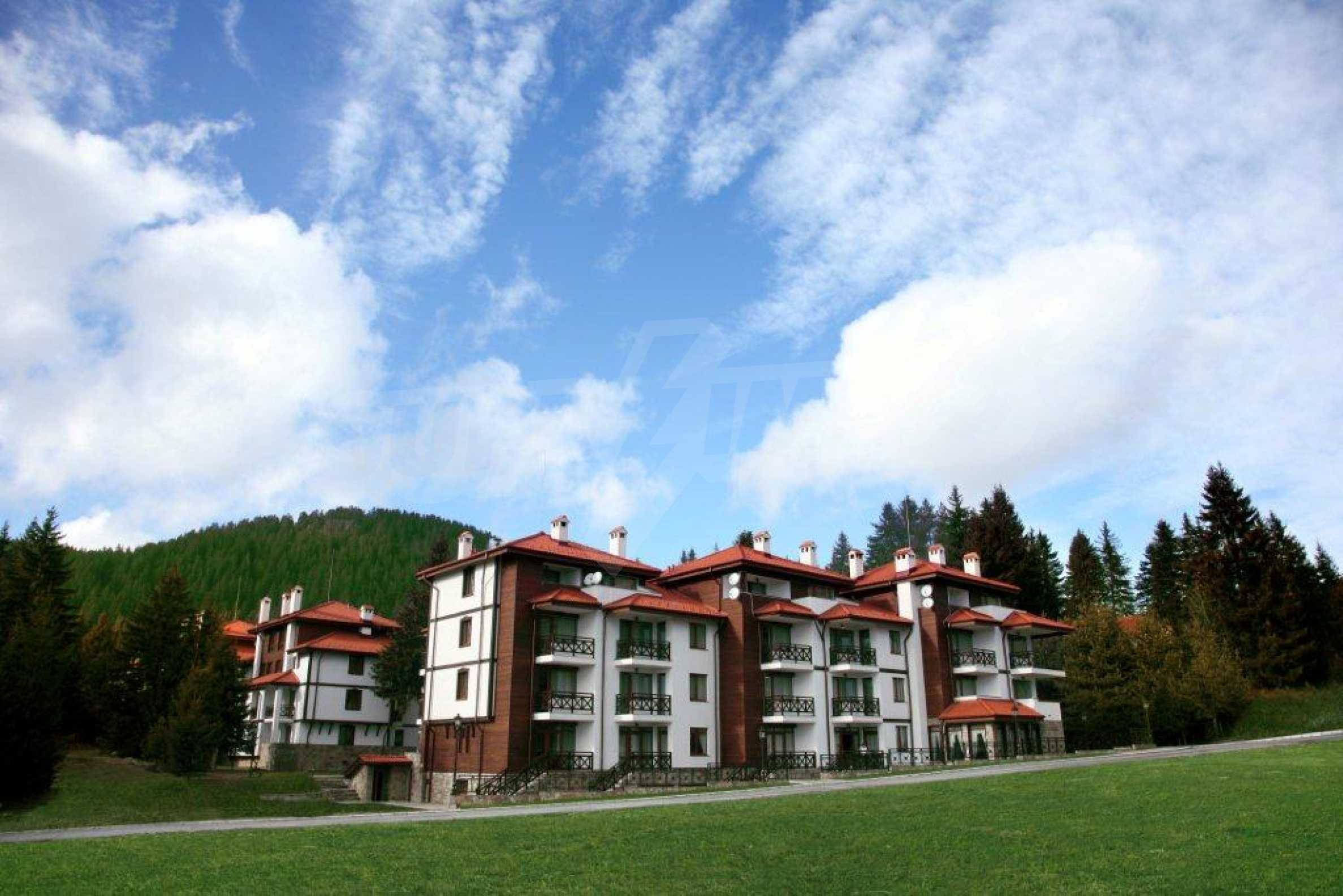 1-bedroom apartment in Pamporovo 3
