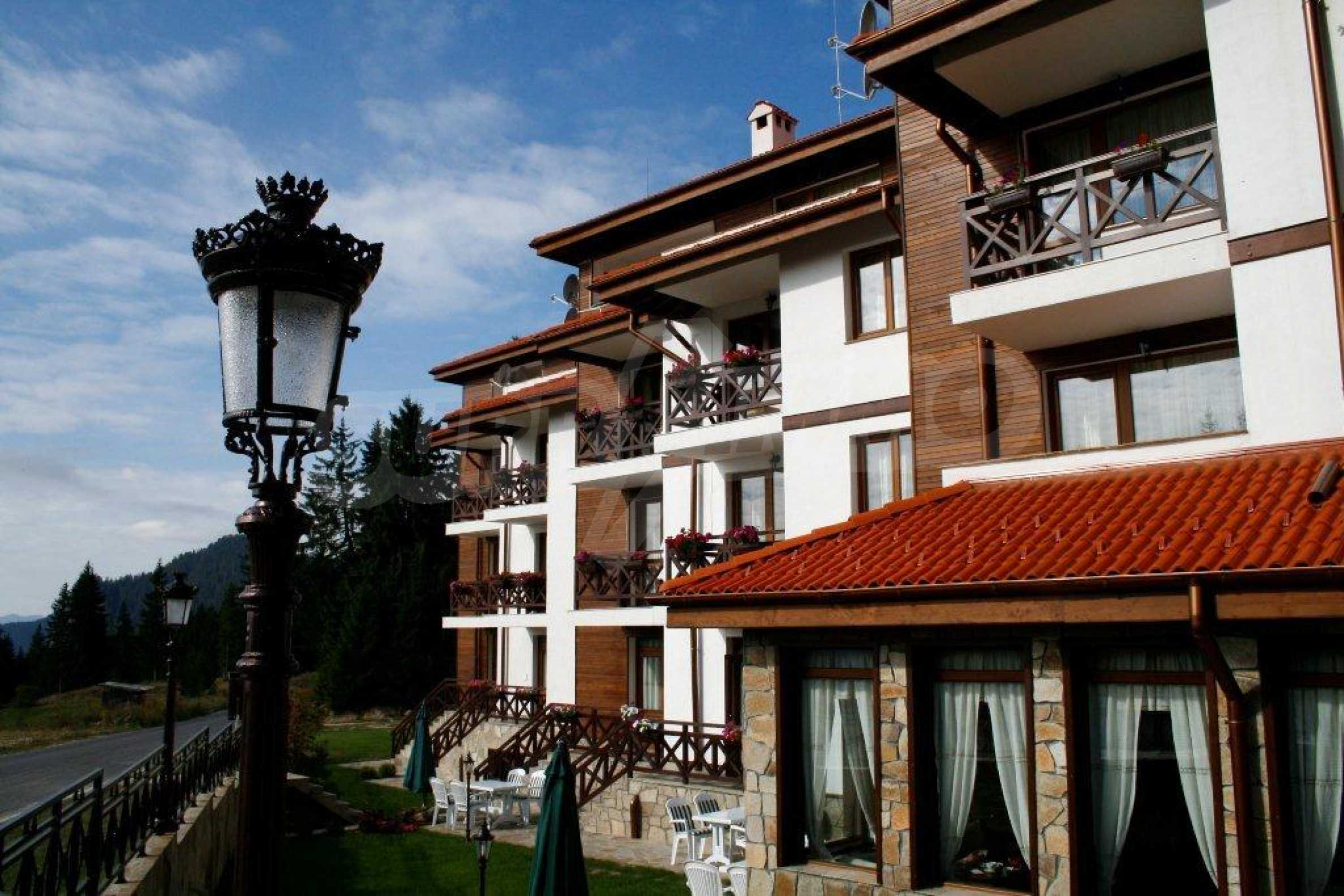 1-bedroom apartment in Pamporovo 5