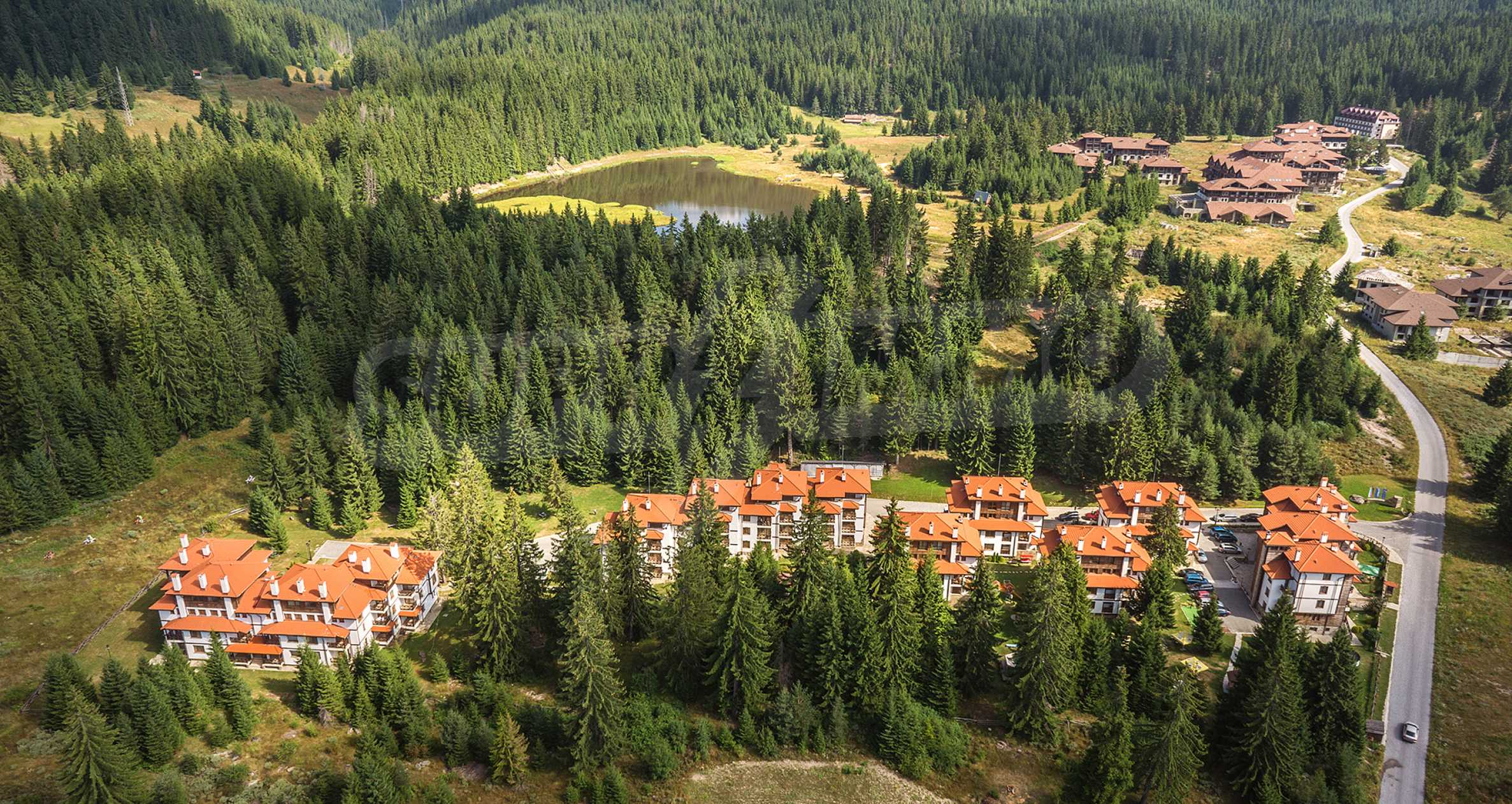 1-bedroom apartment in Pamporovo 6