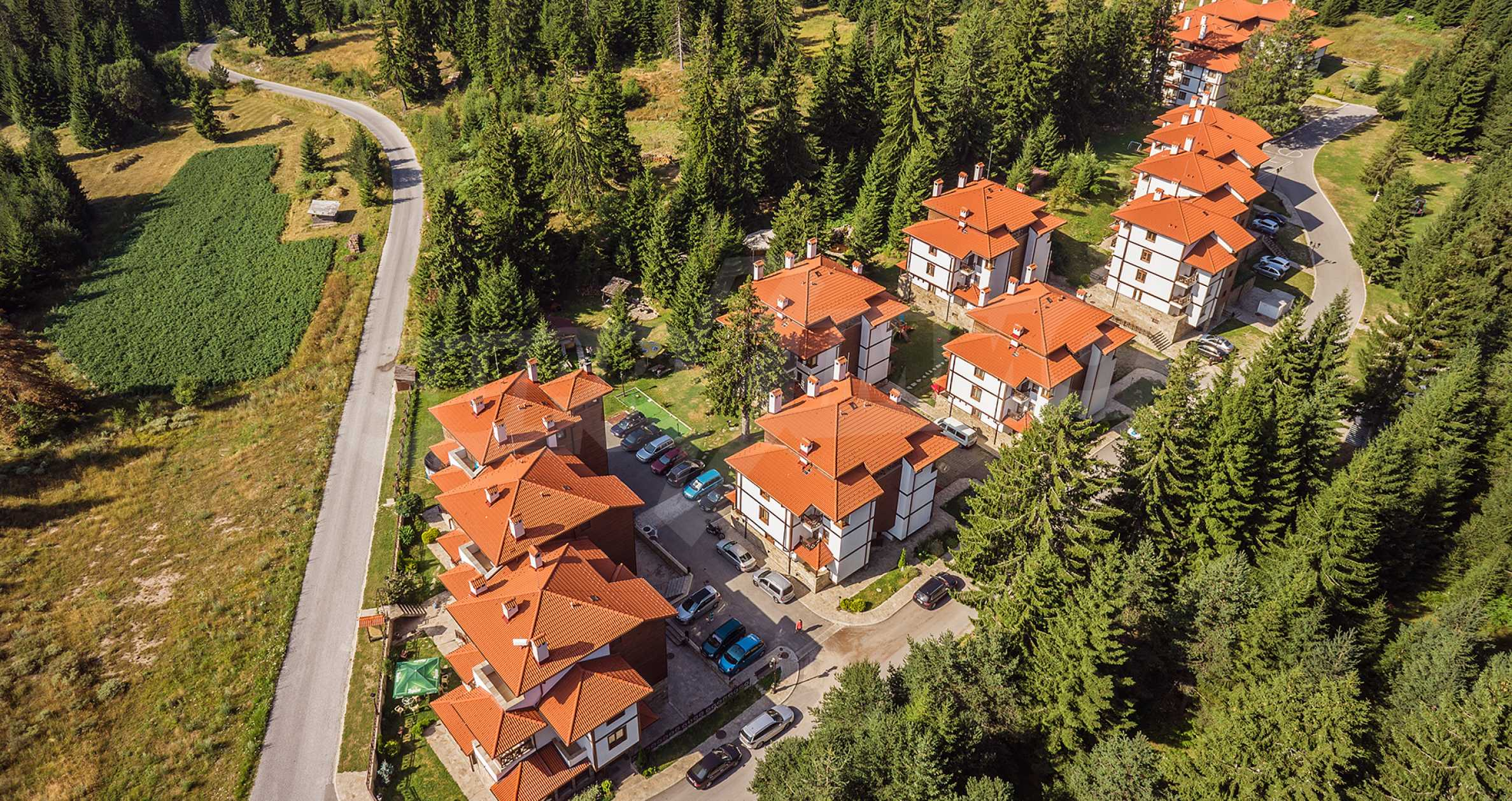 1-bedroom apartment in Pamporovo 7