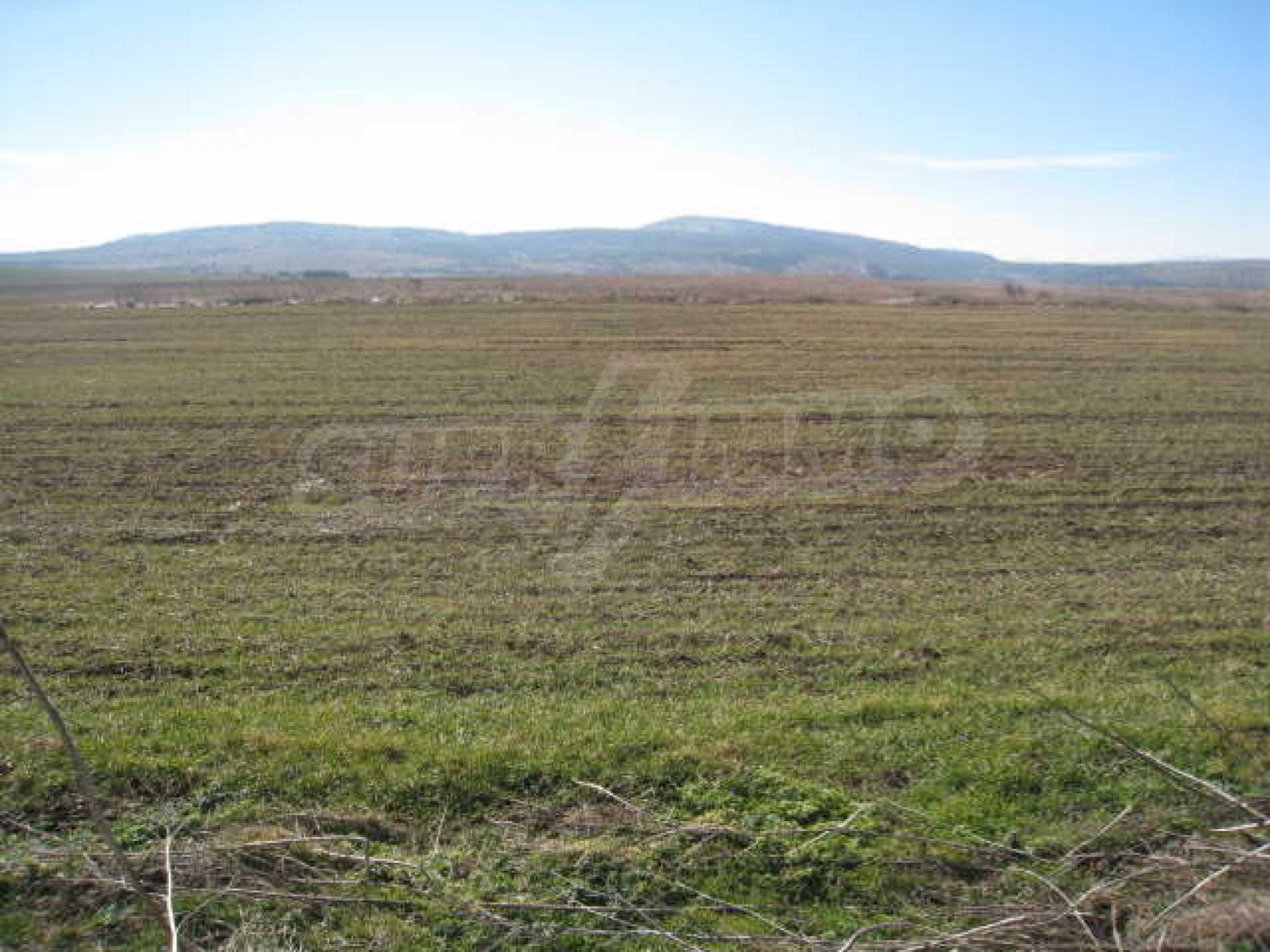 Well-sized plot of agricultural land 1