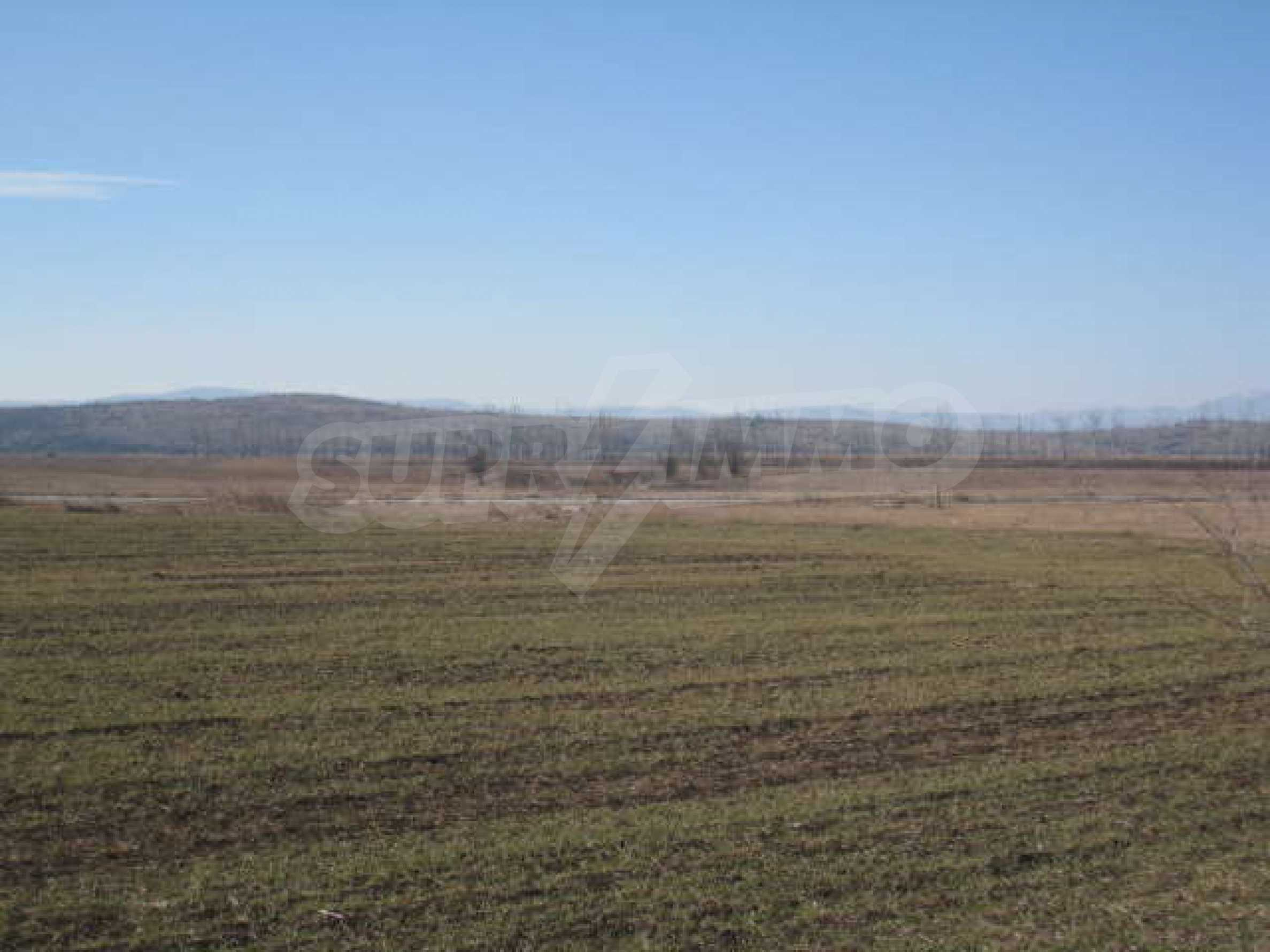 Well-sized plot of agricultural land 12