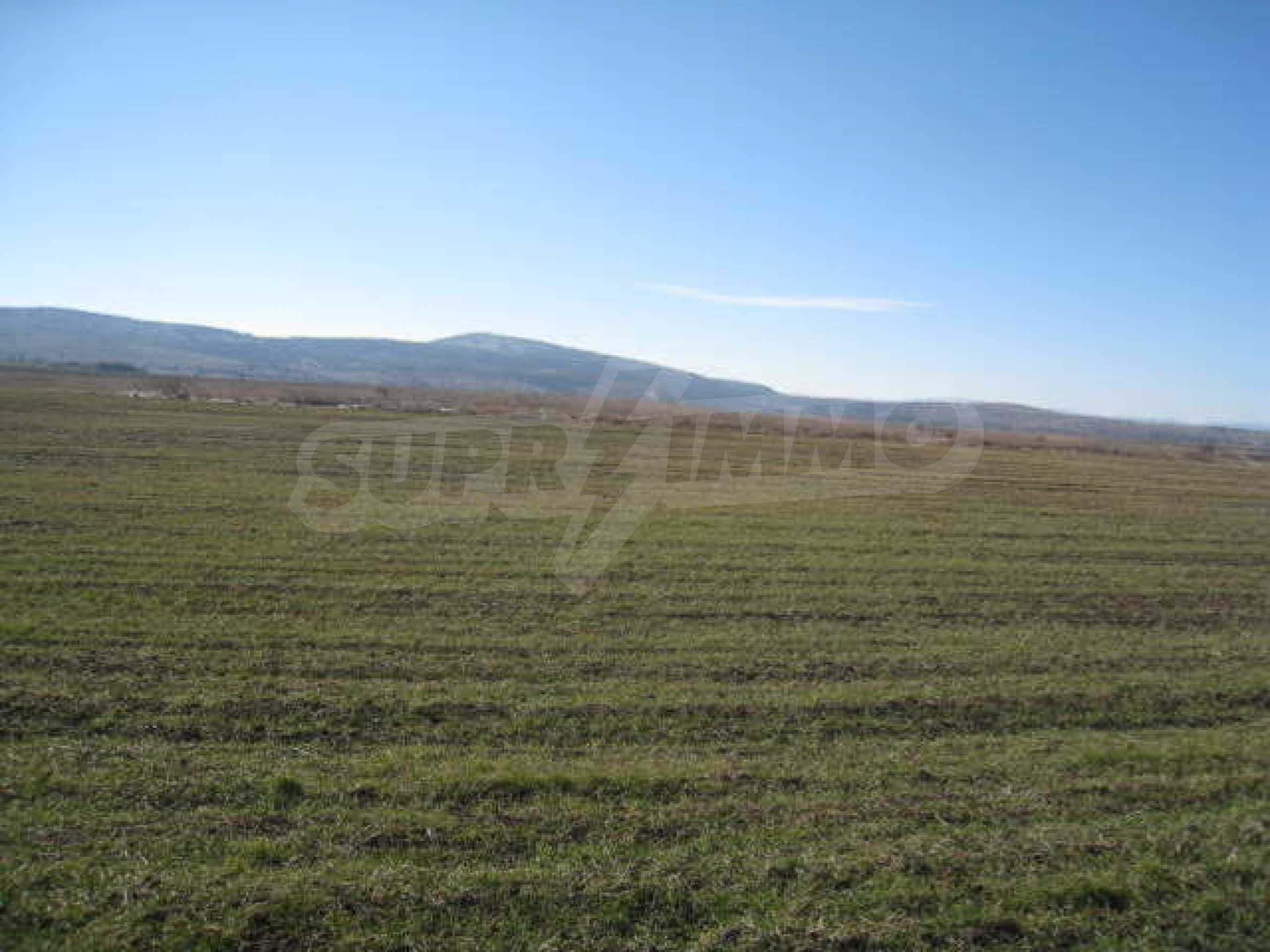 Well-sized plot of agricultural land 4