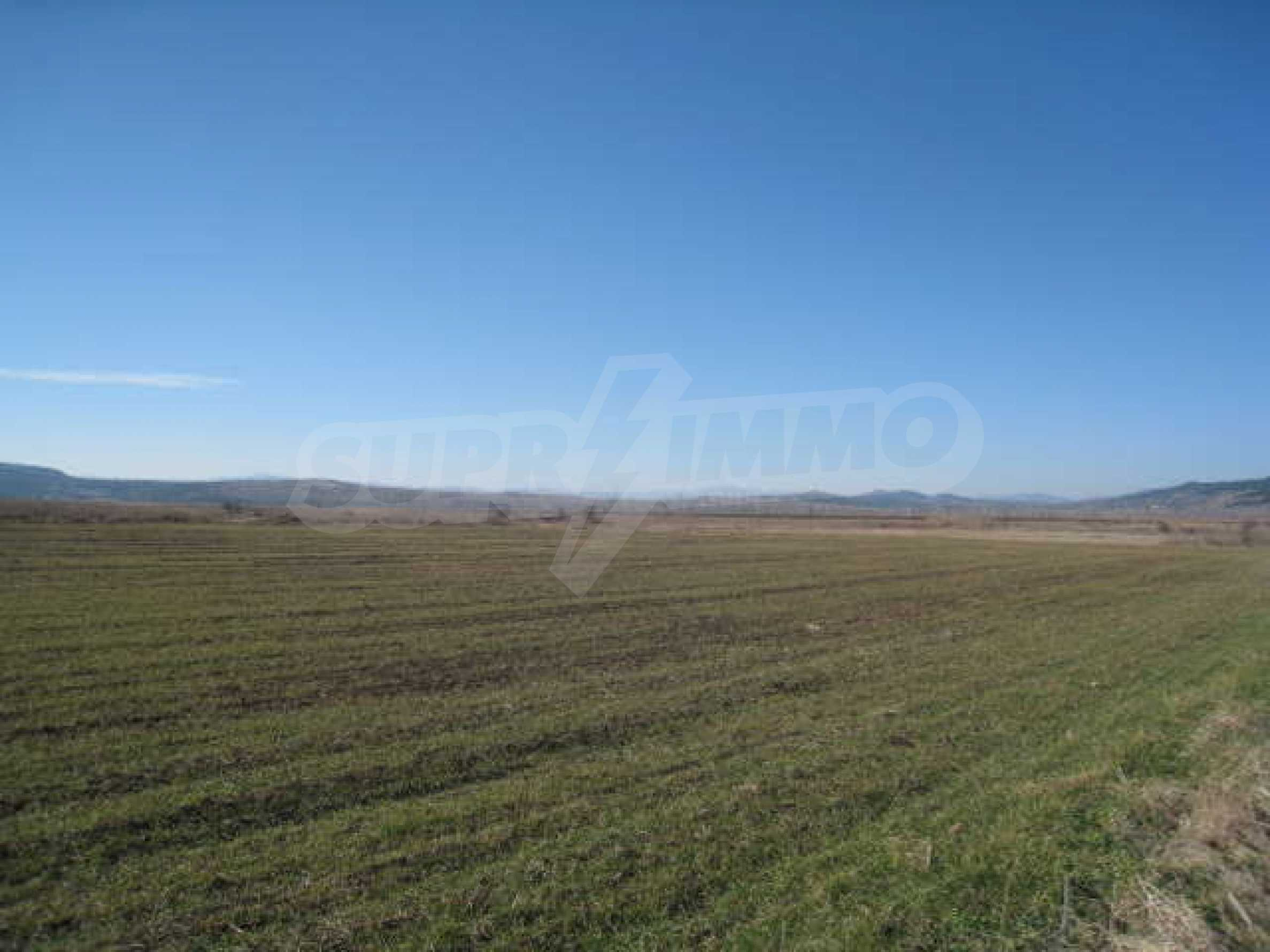 Well-sized plot of agricultural land