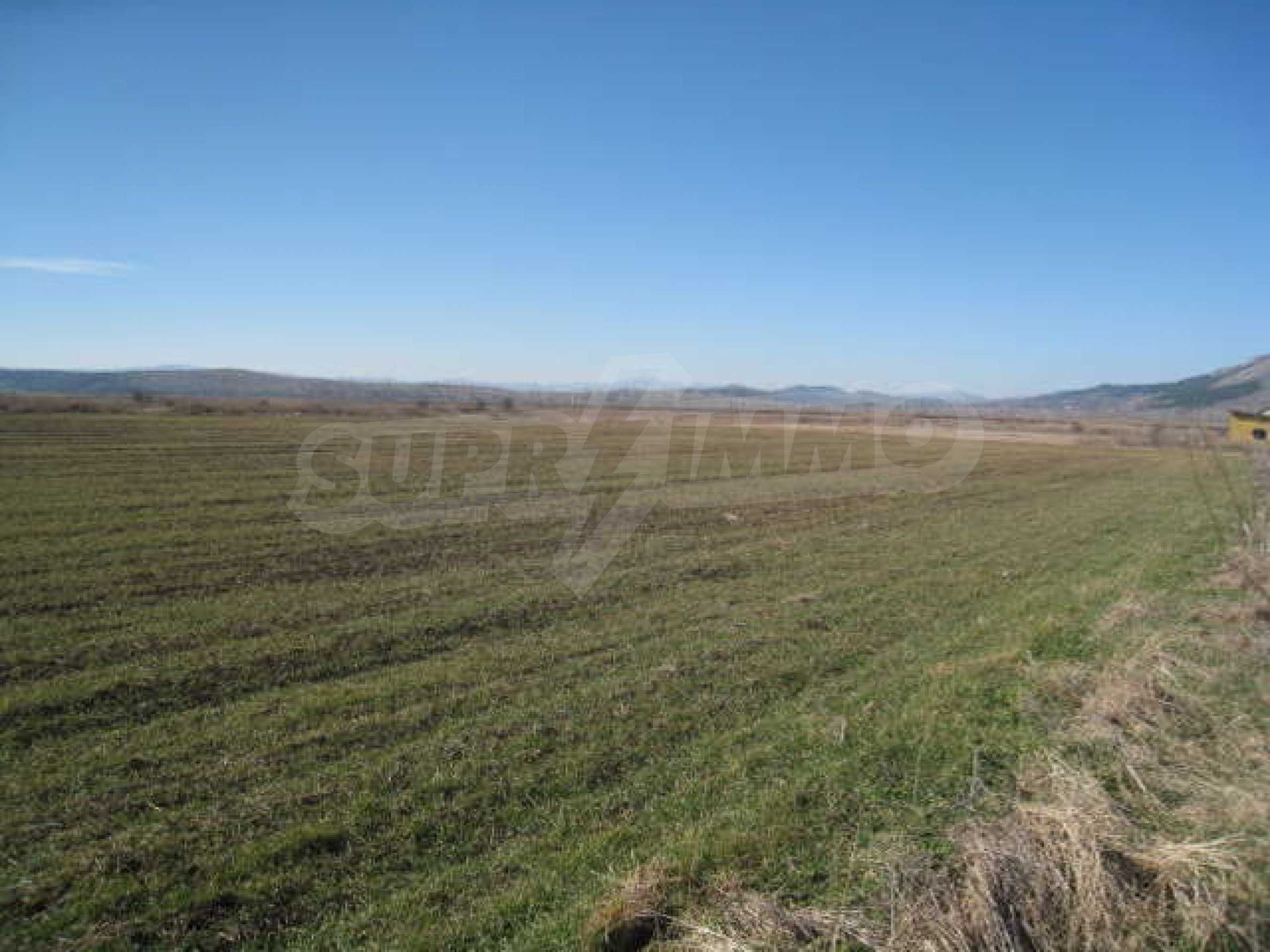 Well-sized plot of agricultural land 8